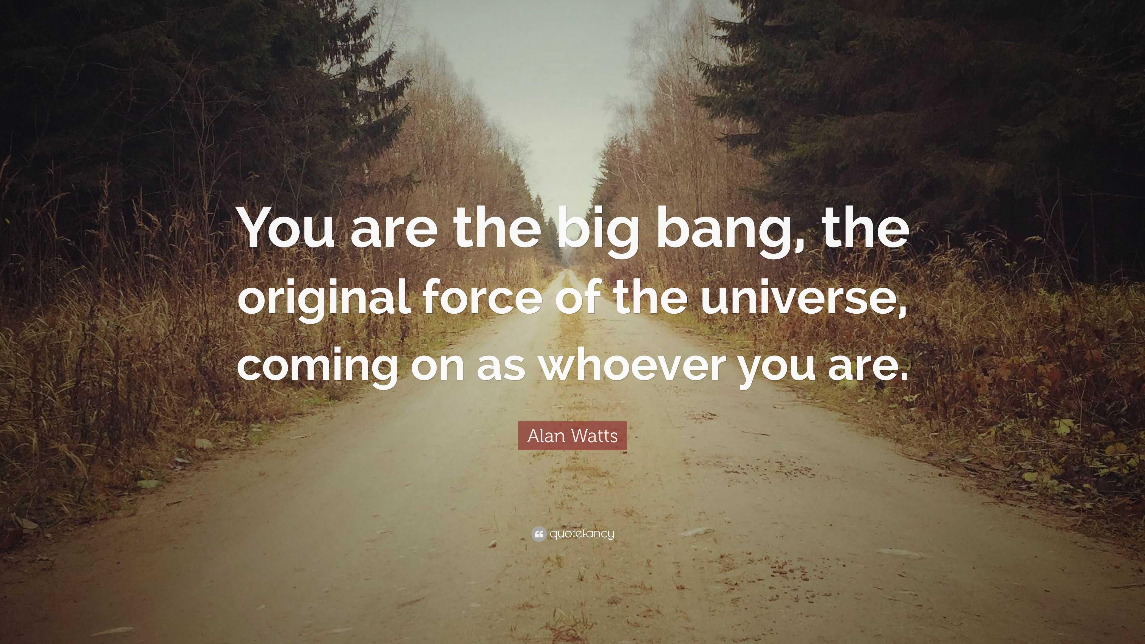 Alan Watts Quote   U201cyou Are The Big Bang  The Original