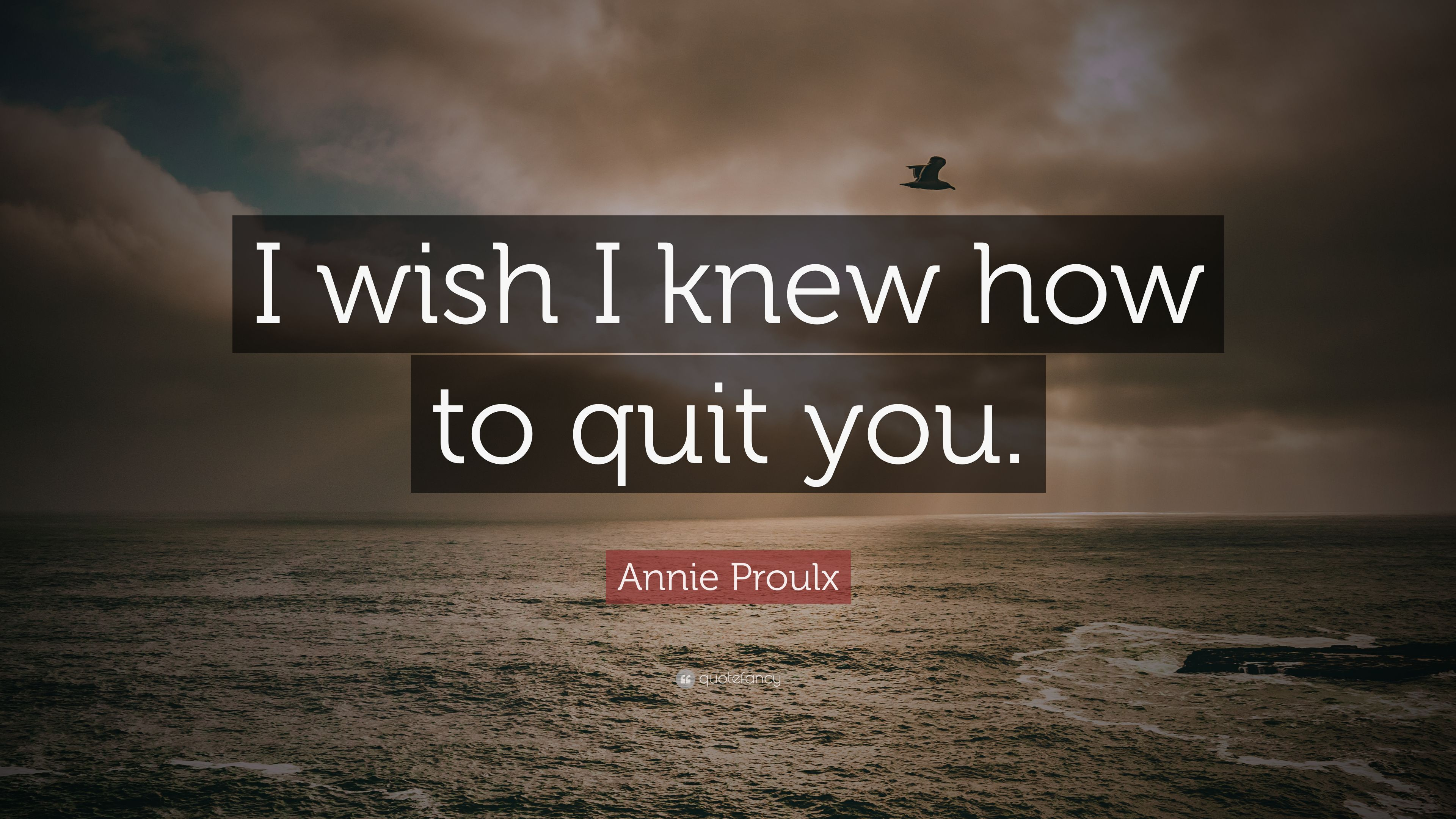 """Annie Proulx Quote: """"I Wish I Knew How To Quit You."""" (12"""