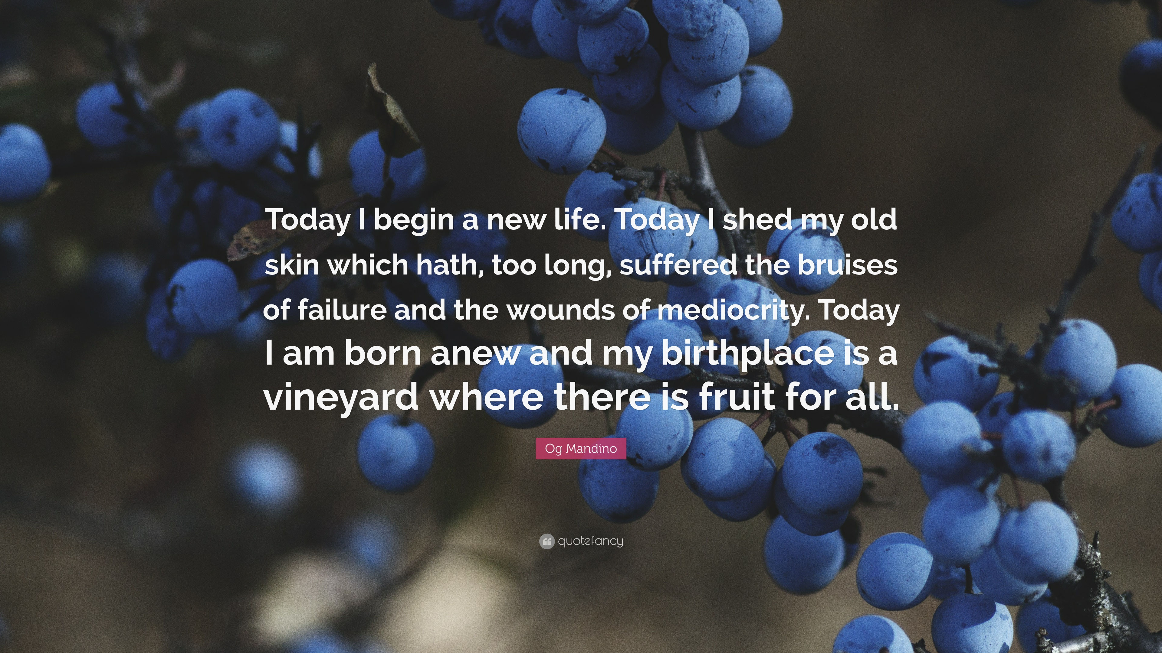 "Quotes About New Life Og Mandino Quote ""Today I Begin A New Lifetoday I Shed My Old"