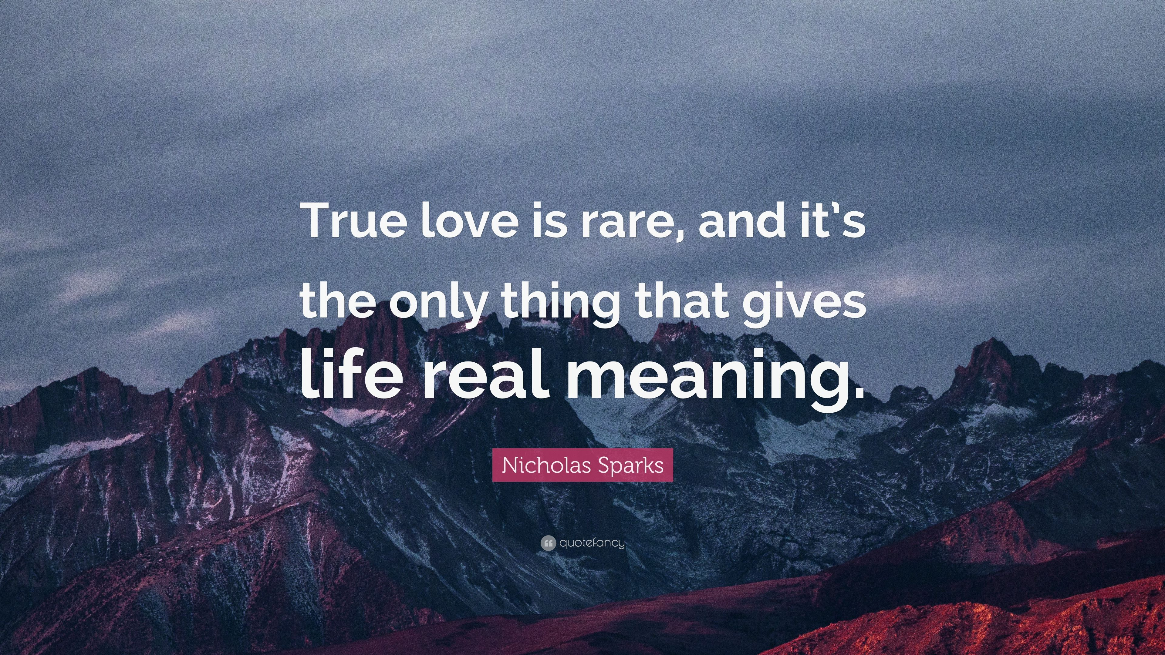Nicholas Sparks Quote True Love Is Rare And It S The Only Thing