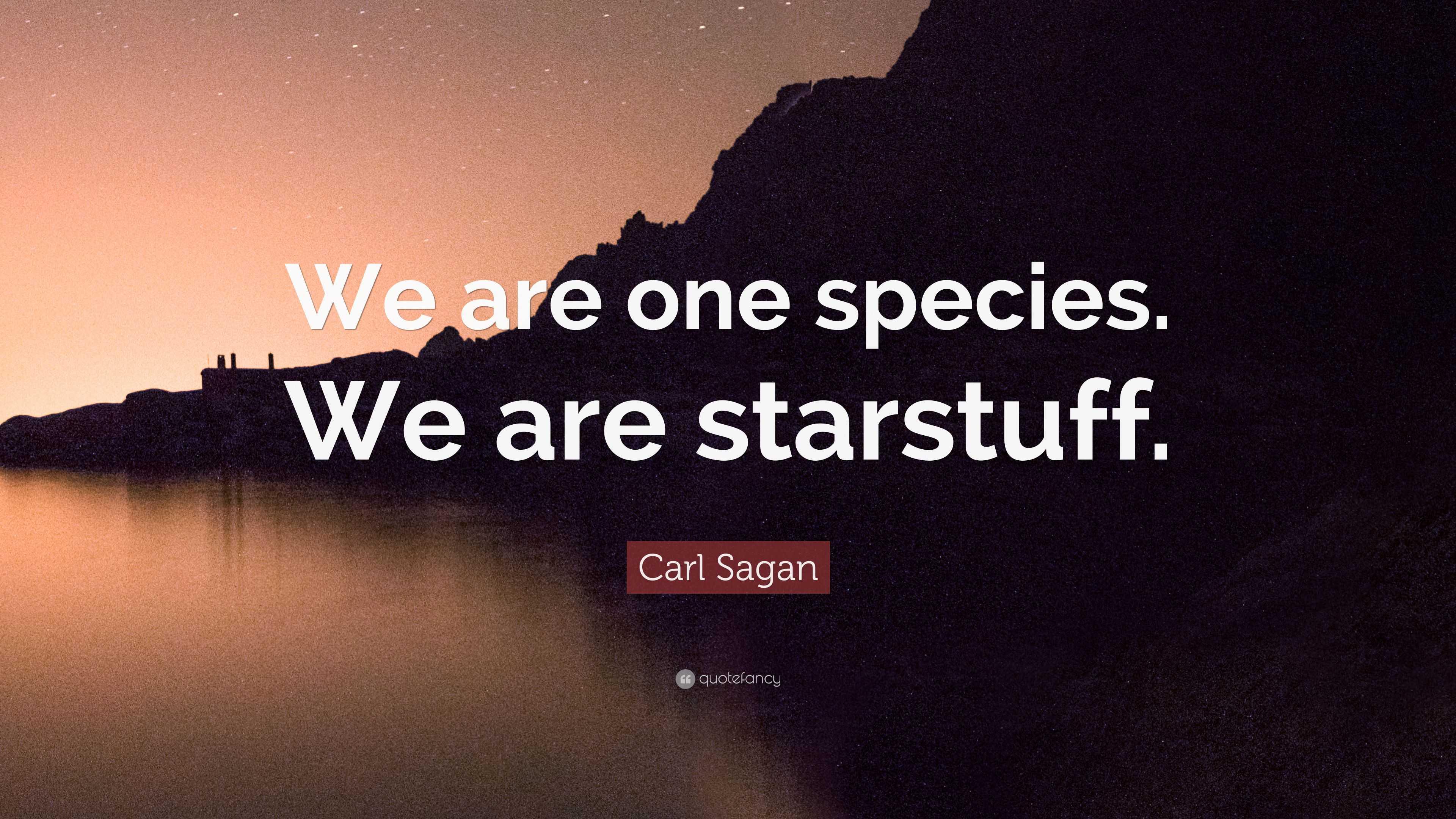 "Carl Sagan Love Quote Cool Carl Sagan Quote ""We Are One Specieswe Are Starstuff."" 12"