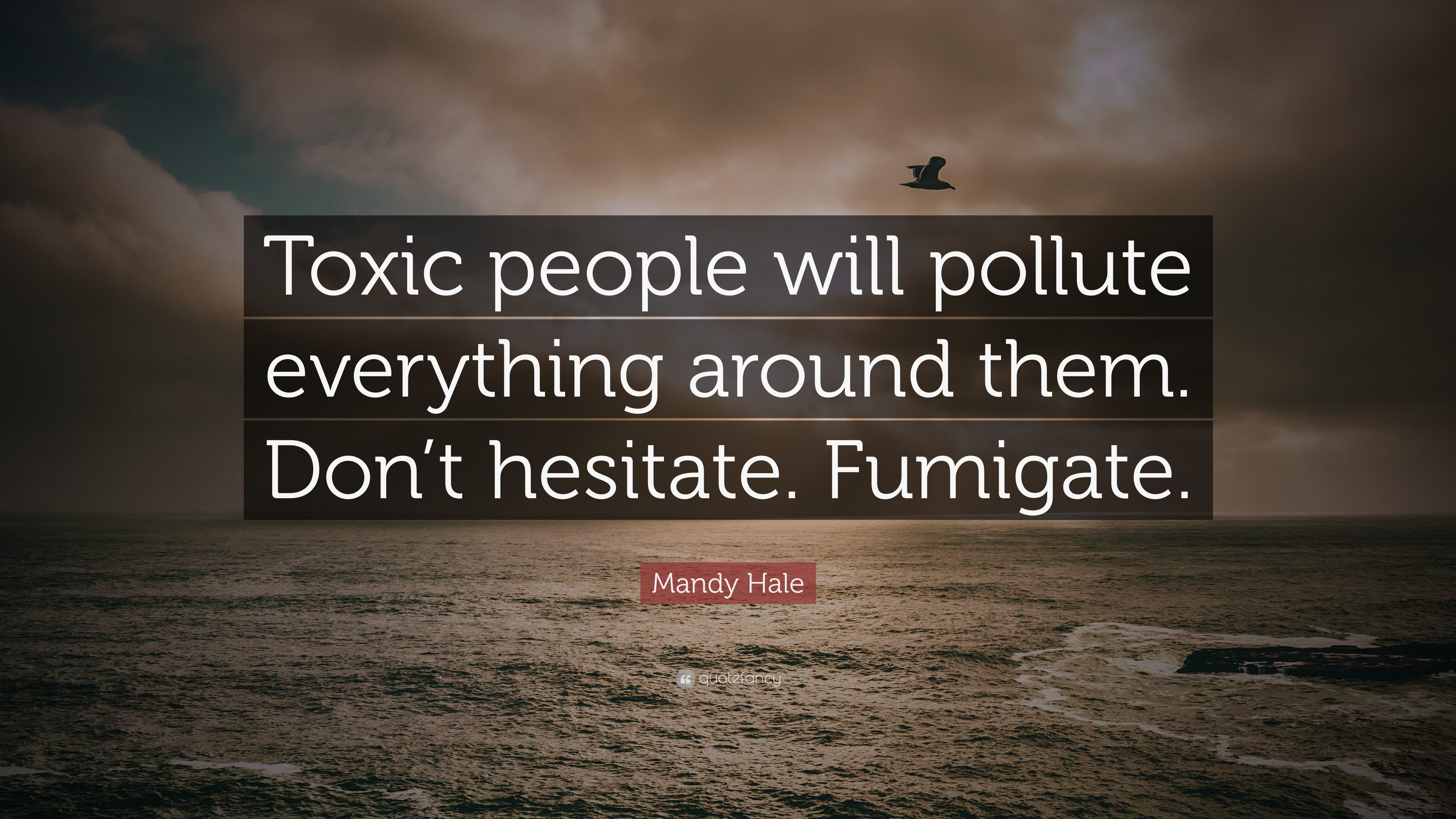 "Mandy Hale Quotes Mandy Hale Quote ""Toxic People Will Pollute Everything Around"