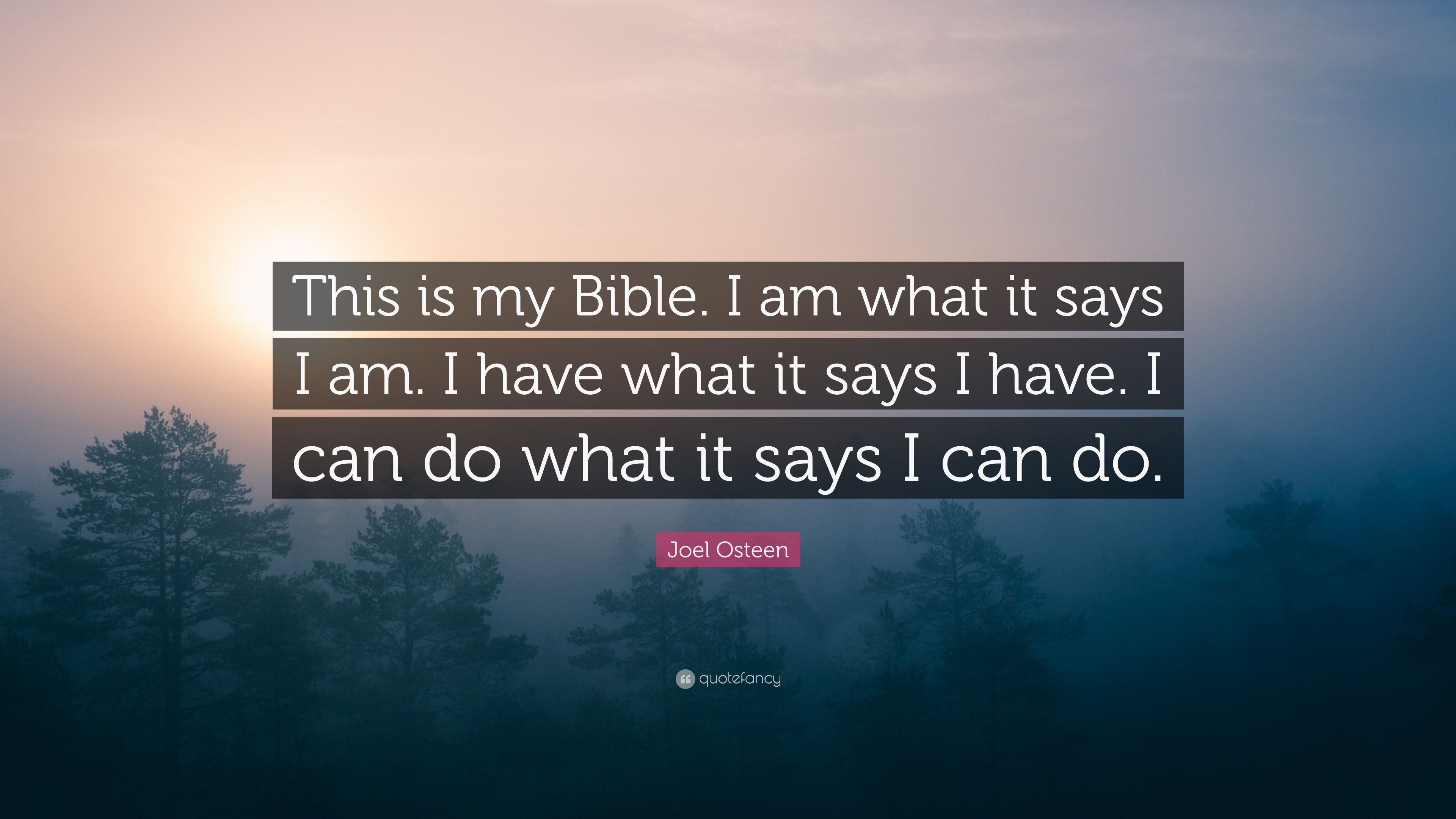 Joel Osteen Quote This Is My Bible I Am What It Says I Am I Have