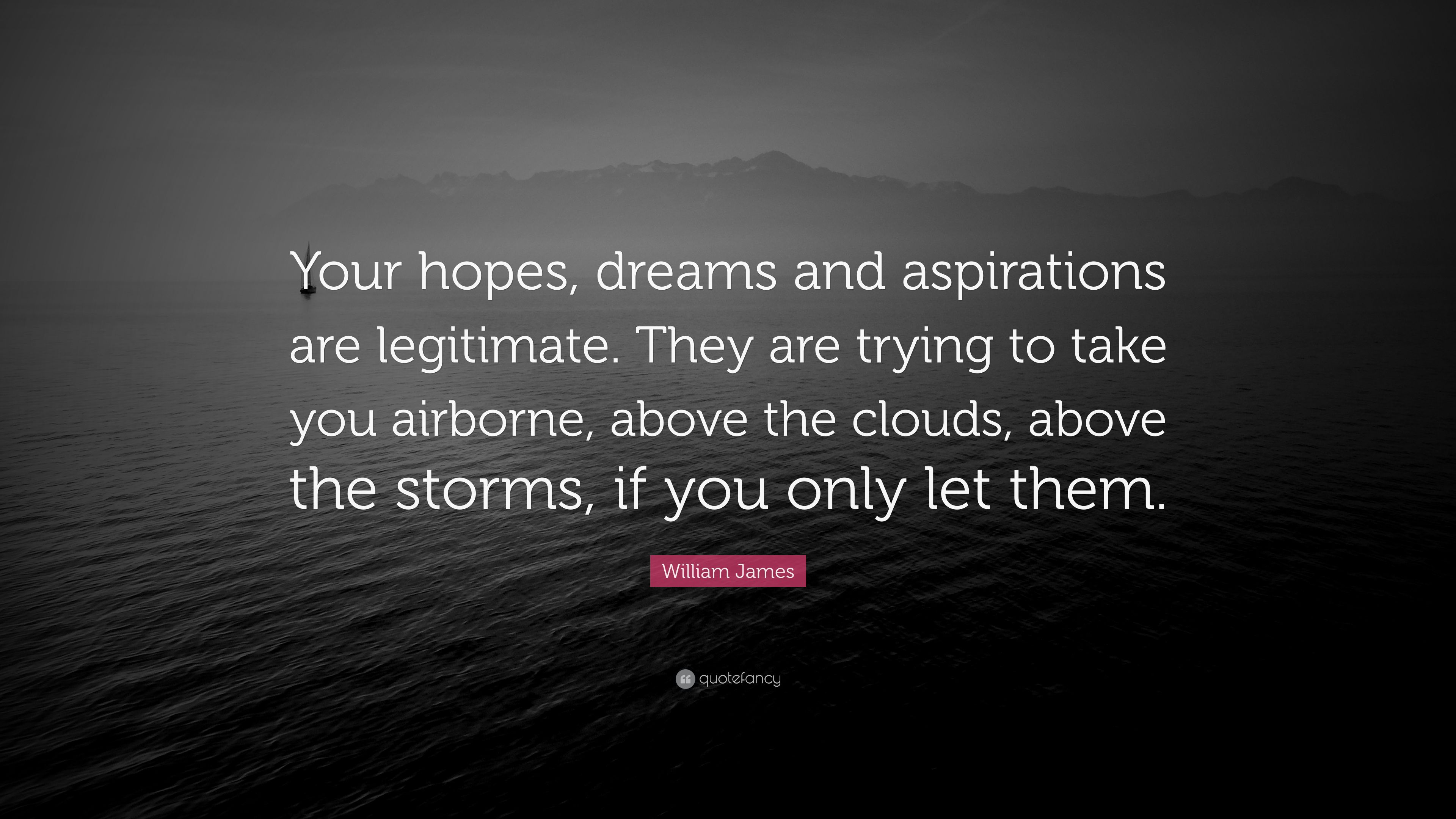 """William James Quote: """"Your Hopes, Dreams And Aspirations"""