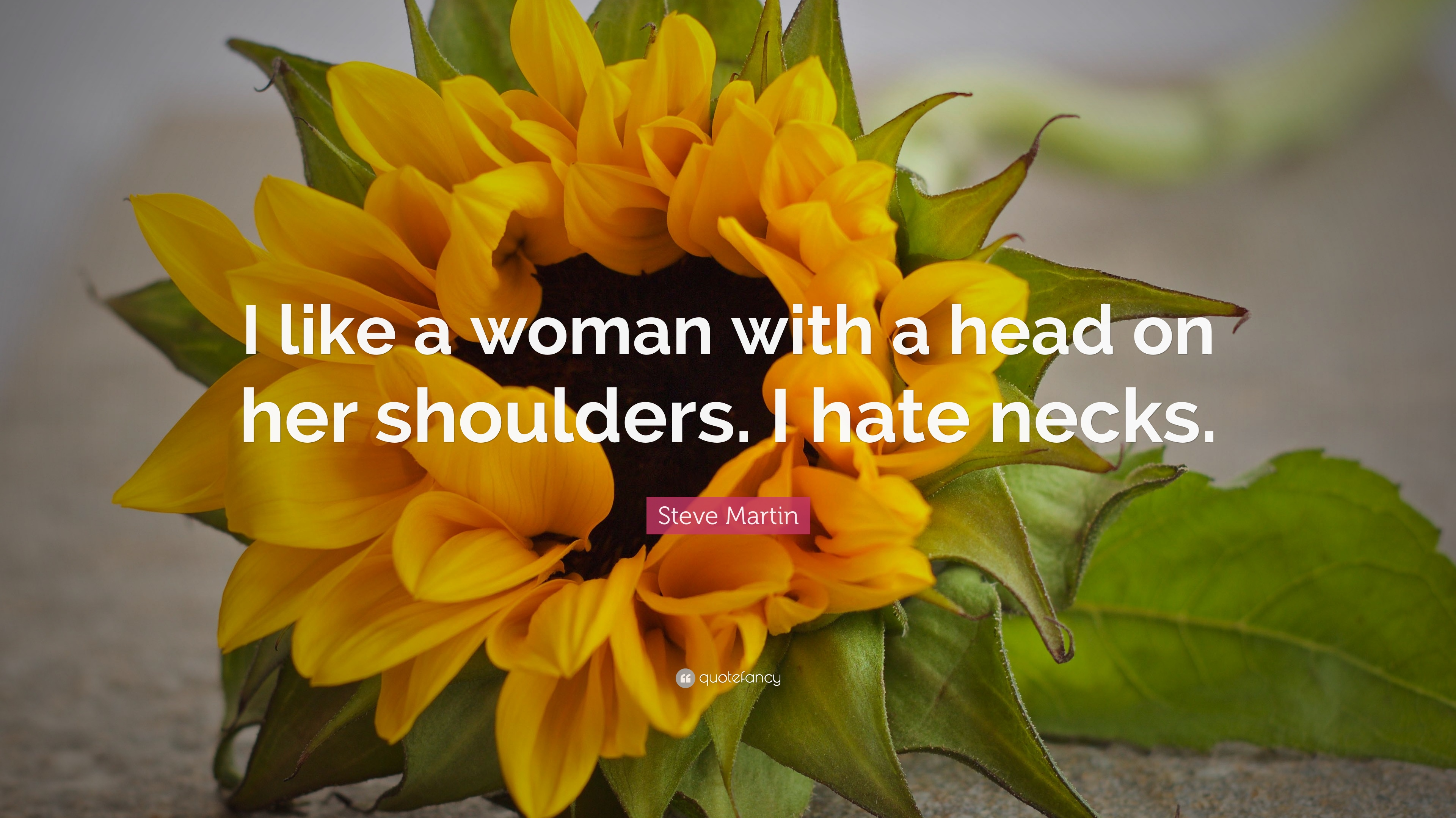 Steve martin quote i like a woman with a head on her shoulders i steve martin quote i like a woman with a head on her shoulders mightylinksfo