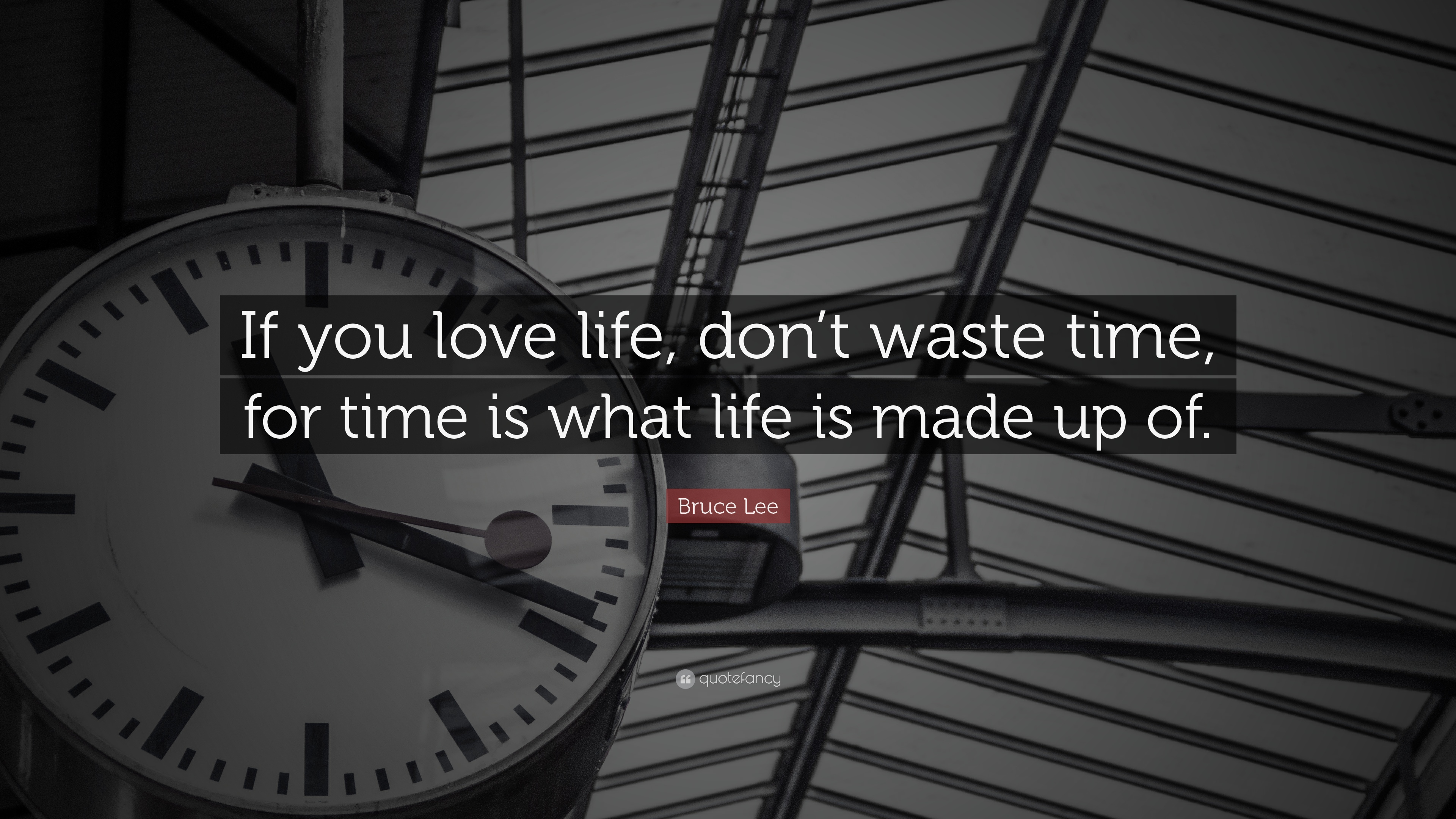 Bruce Lee Quote: U201cIf You Love Life, Donu0027t Waste Time,