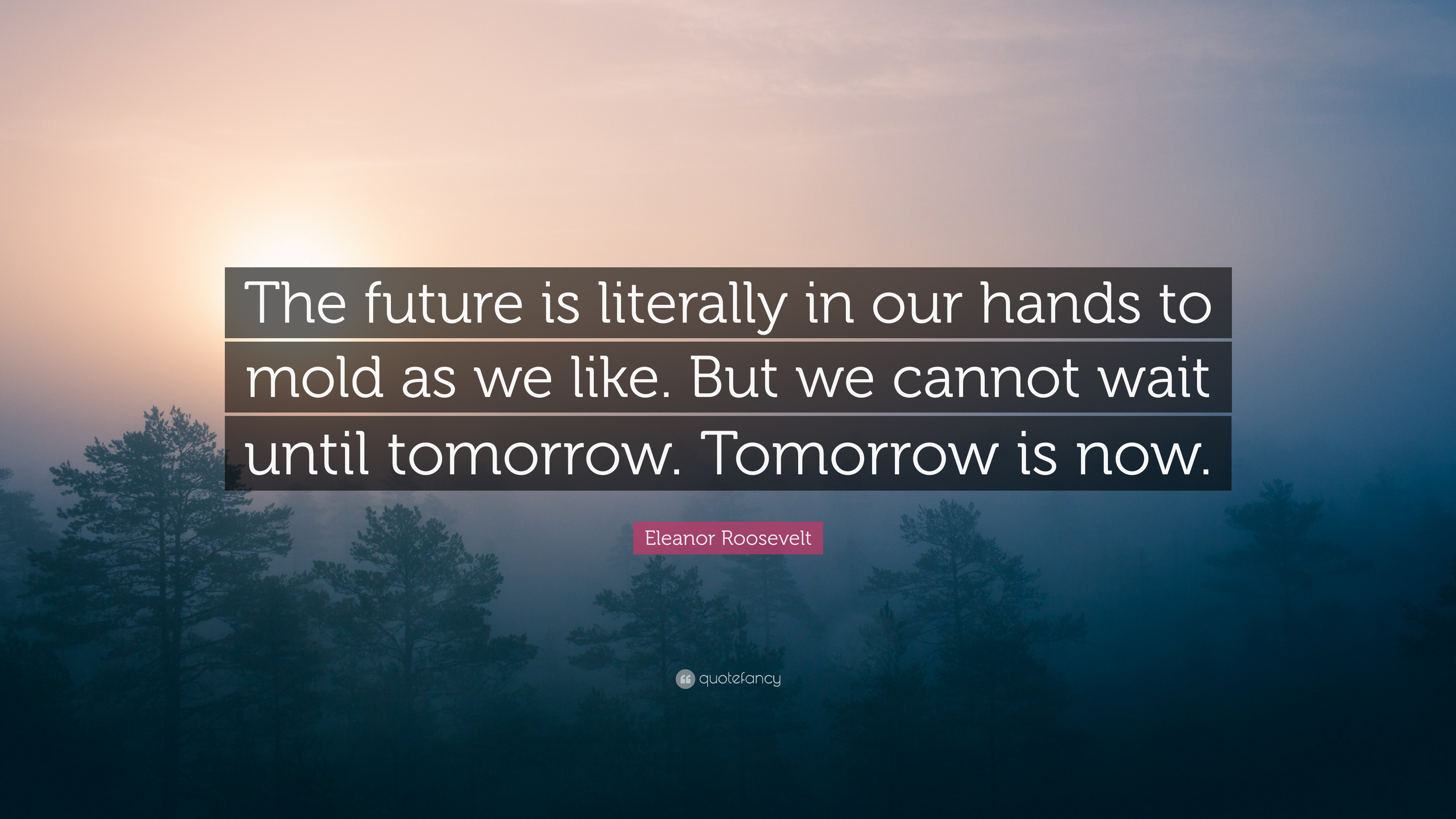 "The Future Is Now Quote Eleanor Roosevelt Quote ""The Future Is Literally In Our Hands To"