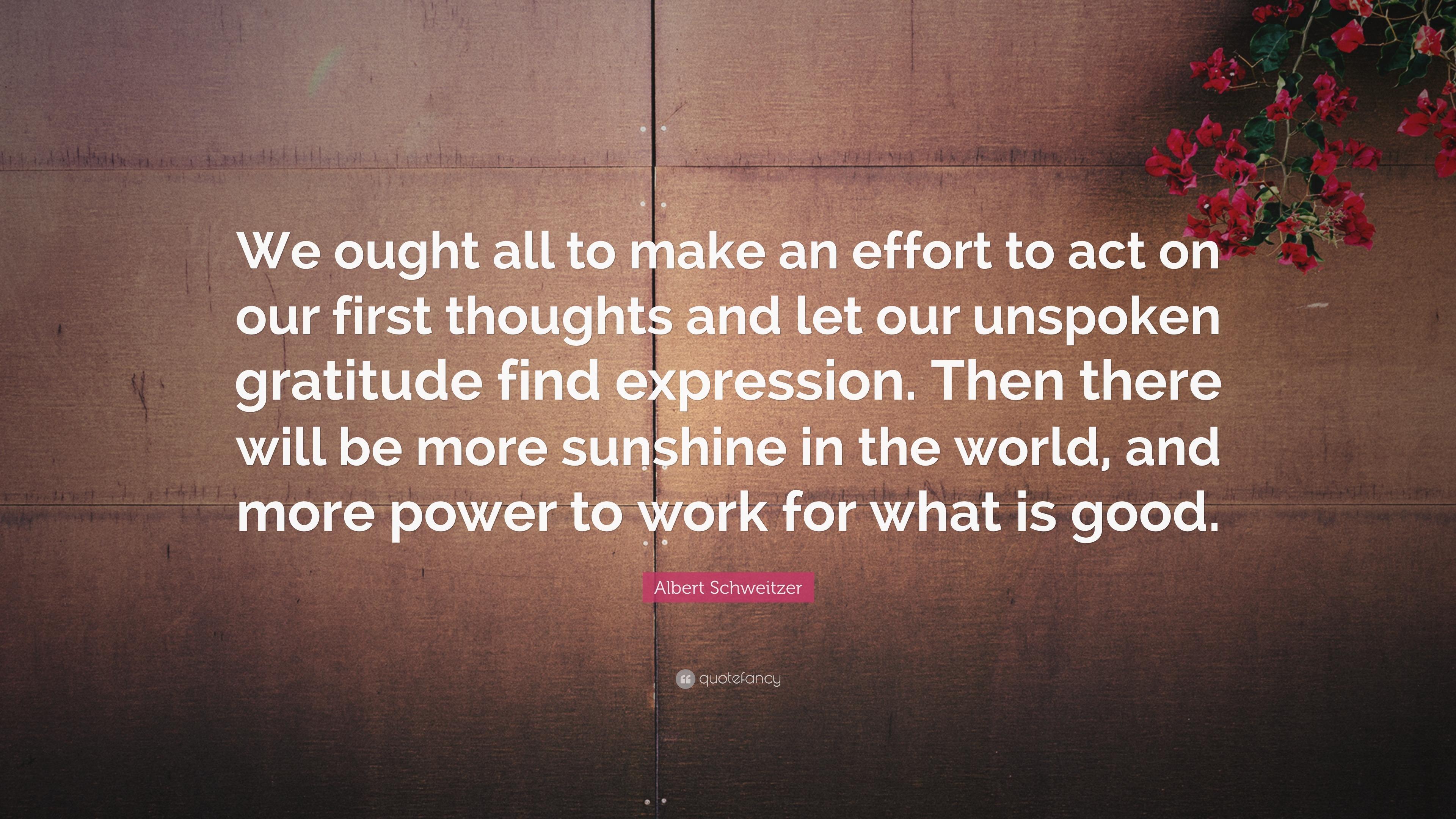 "Albert Schweitzer Quote: ""We Ought All To Make An Effort"