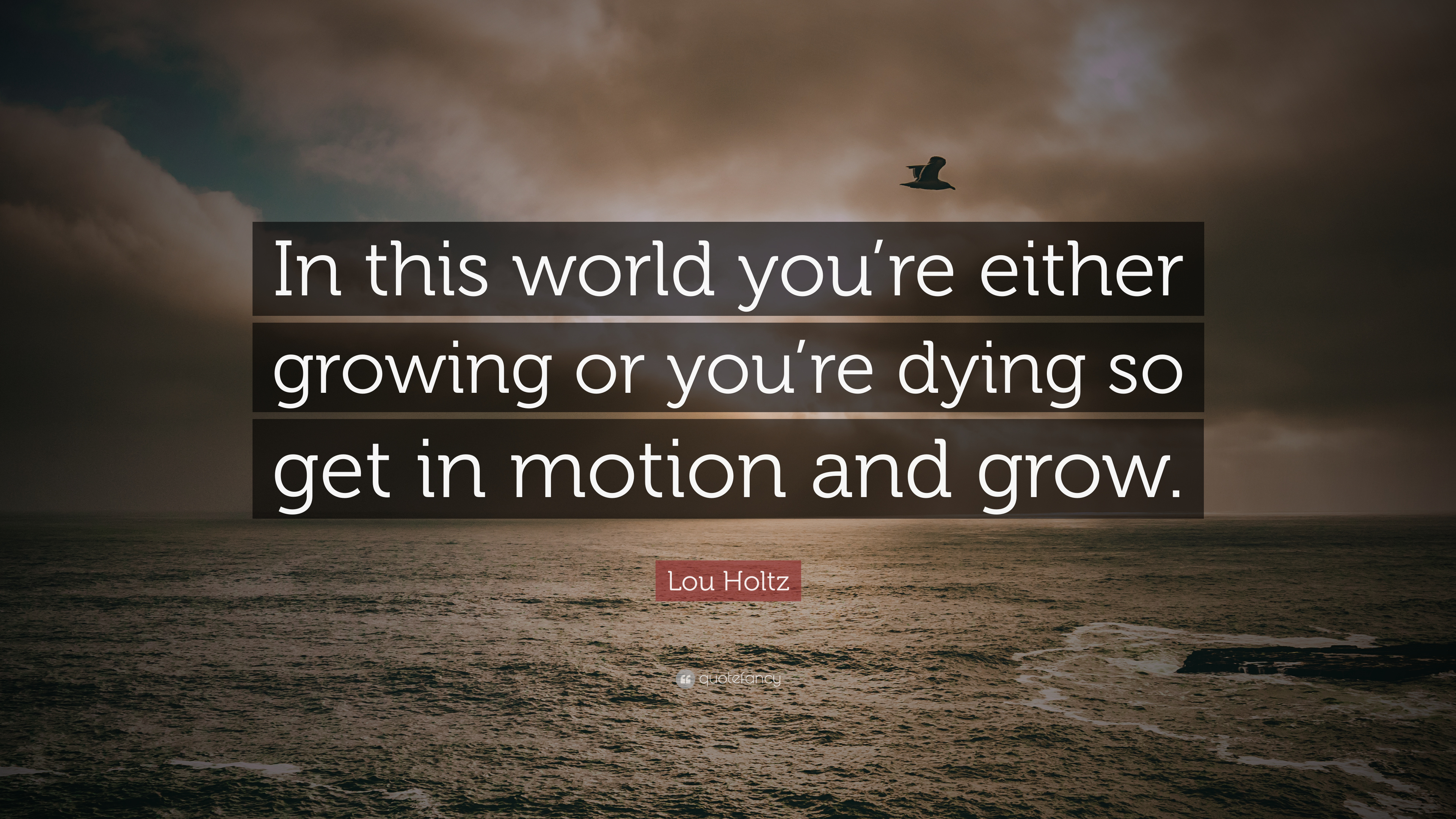"Lou Holtz Quote: ""In This World You're Either Growing Or"