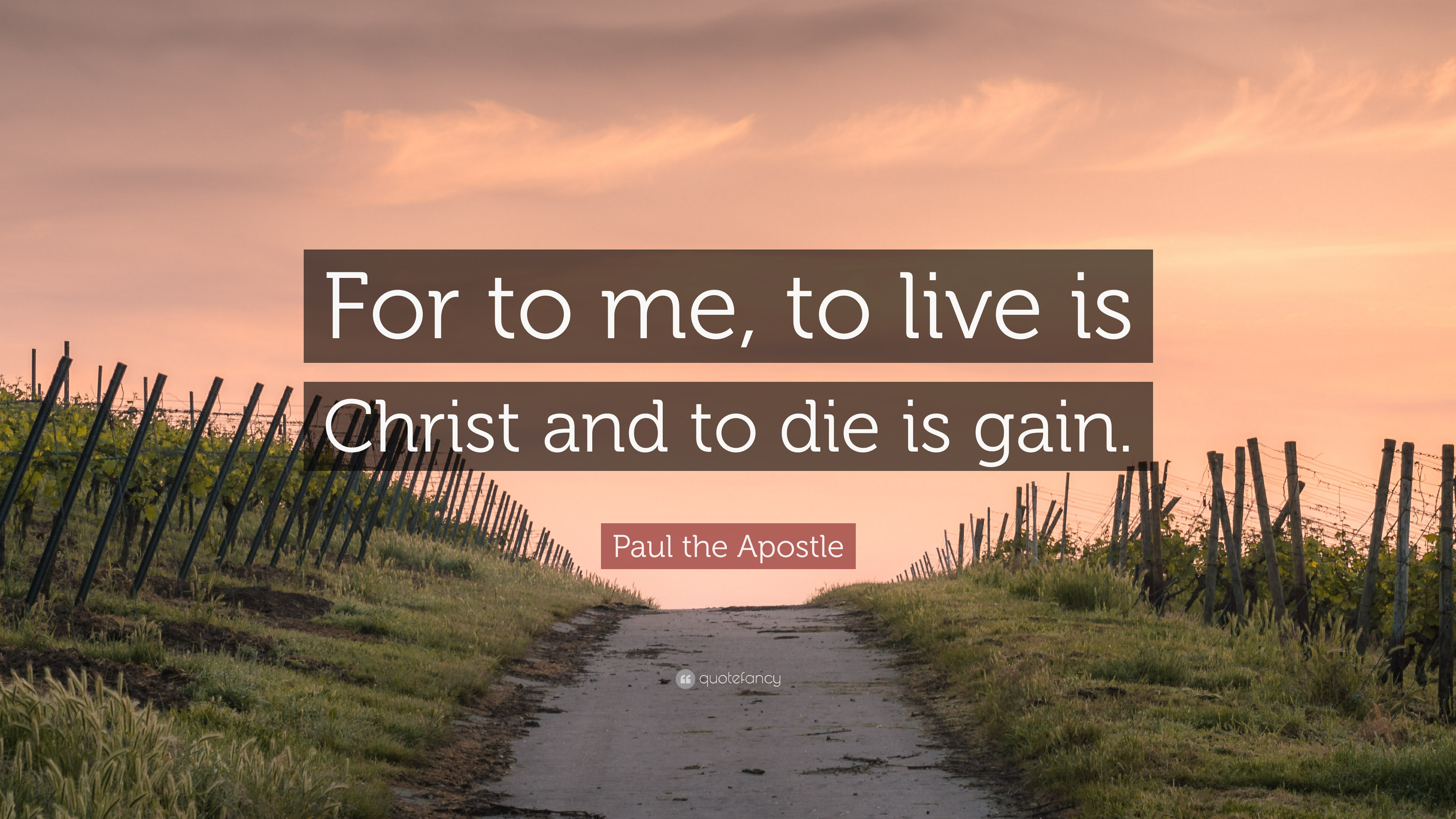 Paul The Apostle Quote For To Me To Live Is Christ And To Die Is