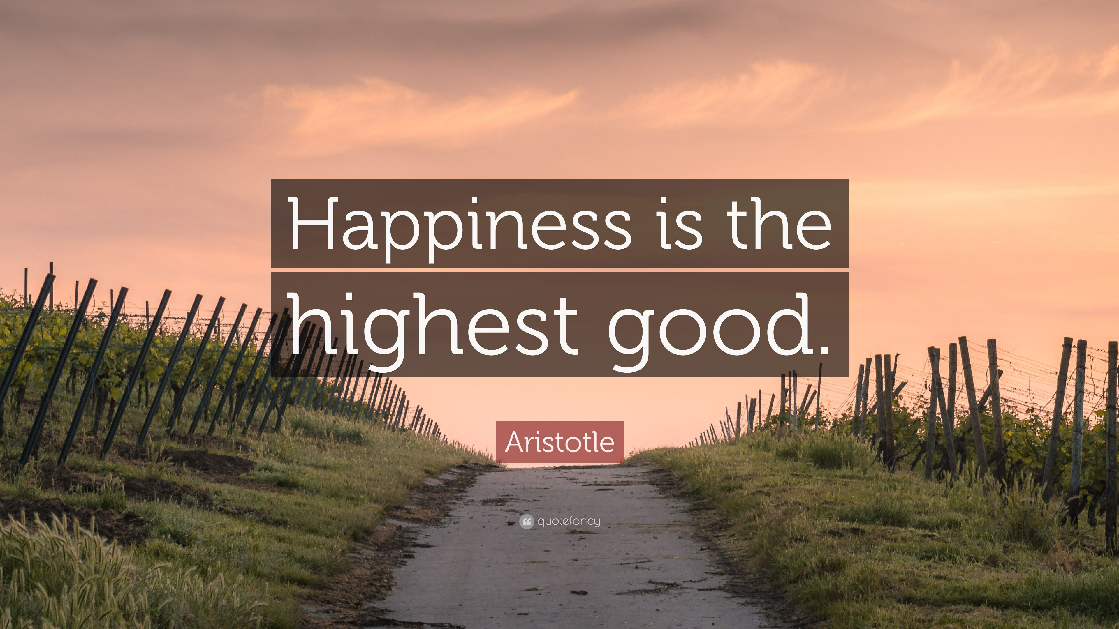 "Aristotle Quote: ""Happiness is the highest good."" (12 ..."