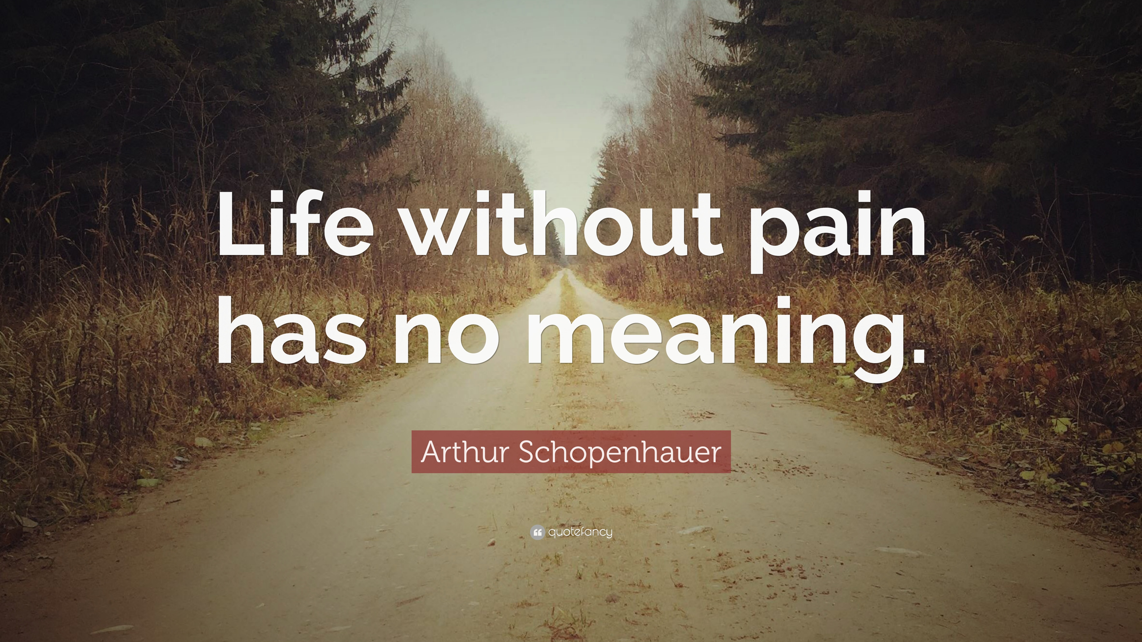 Arthur Schopenhauer Quote Life Without Pain Has No Meaning 12