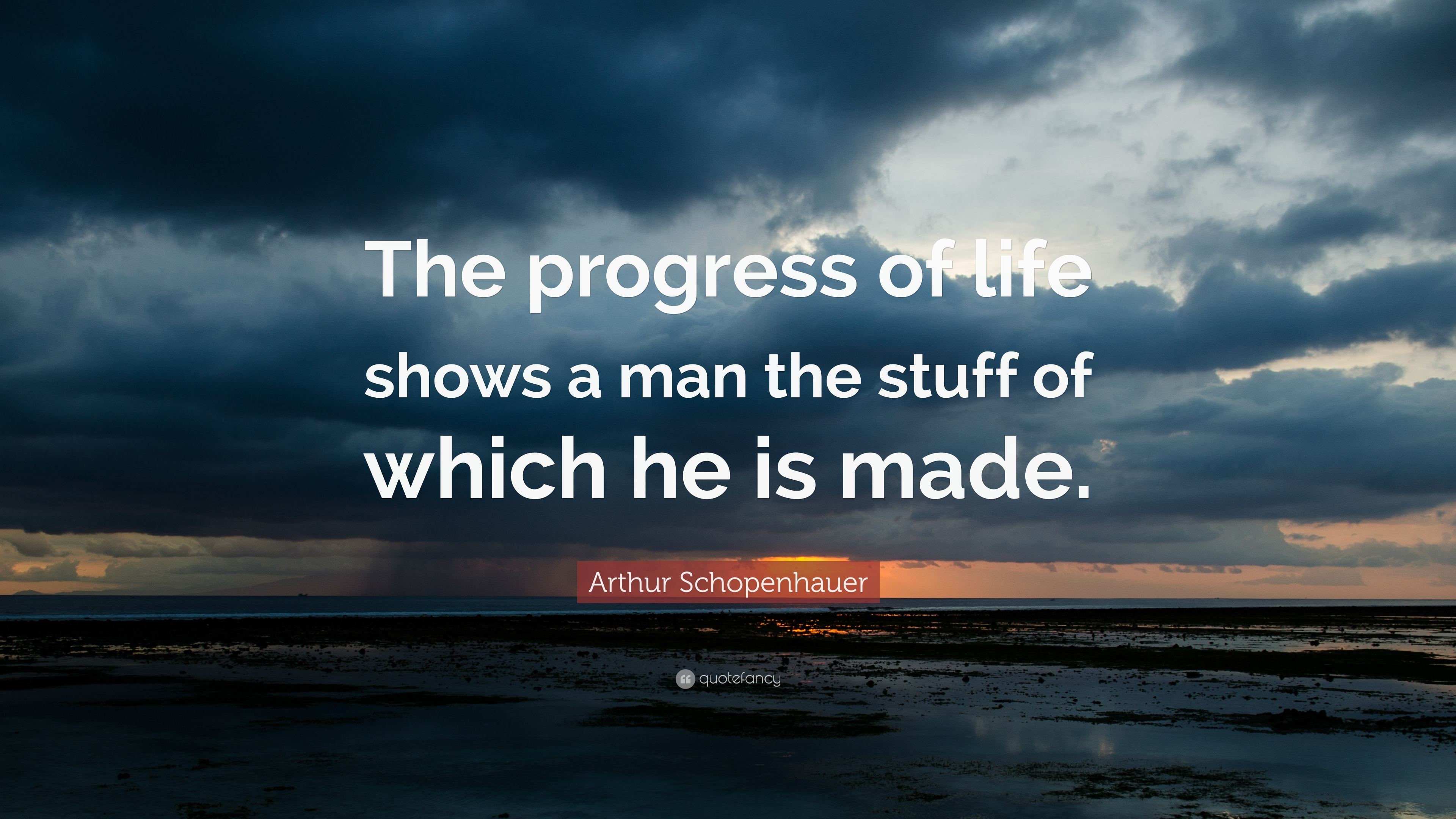 Arthur Schopenhauer Quote The Progress Of Life Shows A Man The