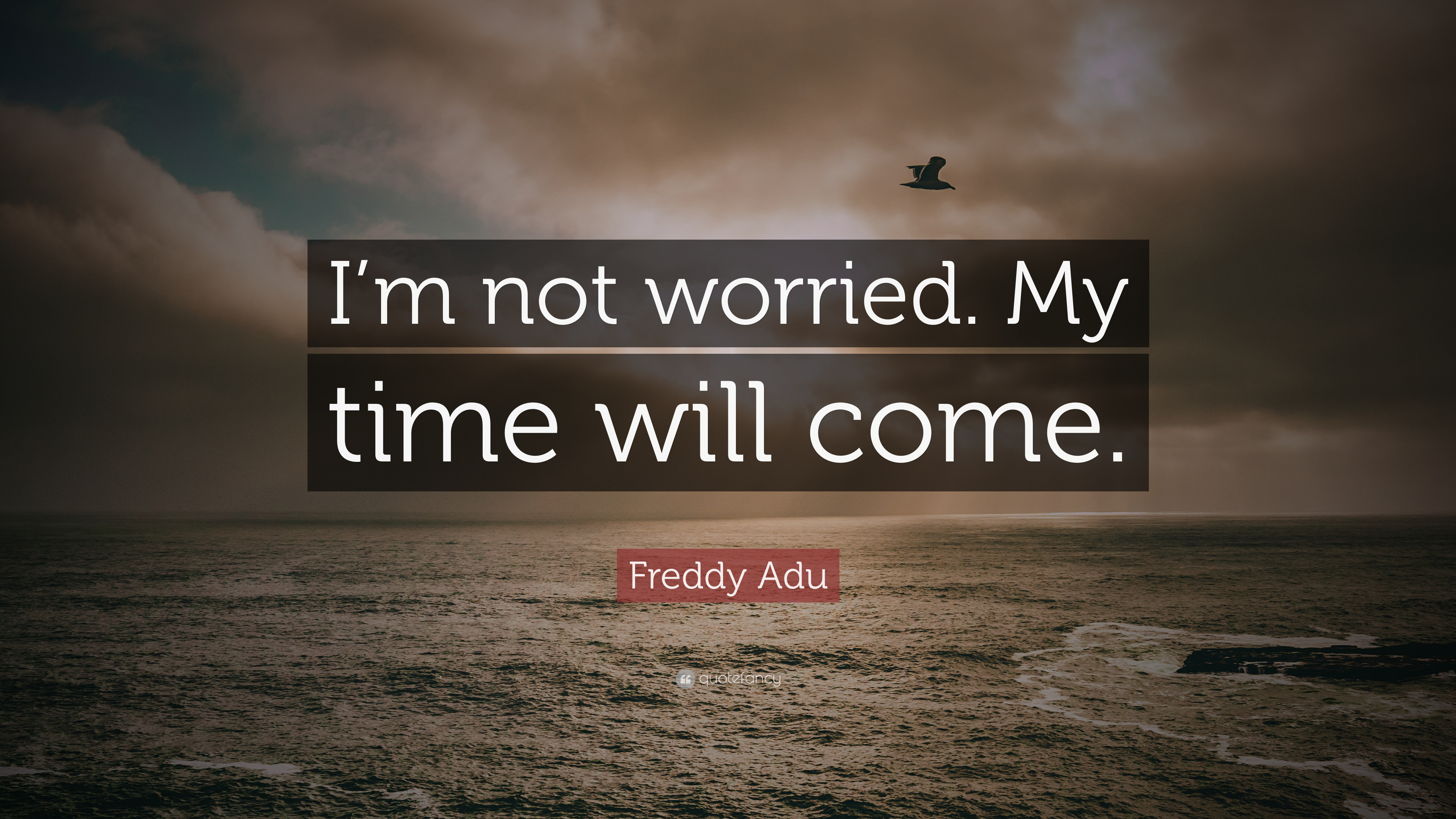 Freddy Adu Quote I M Not Worried My Time Will Come 9 Wallpapers Quotefancy