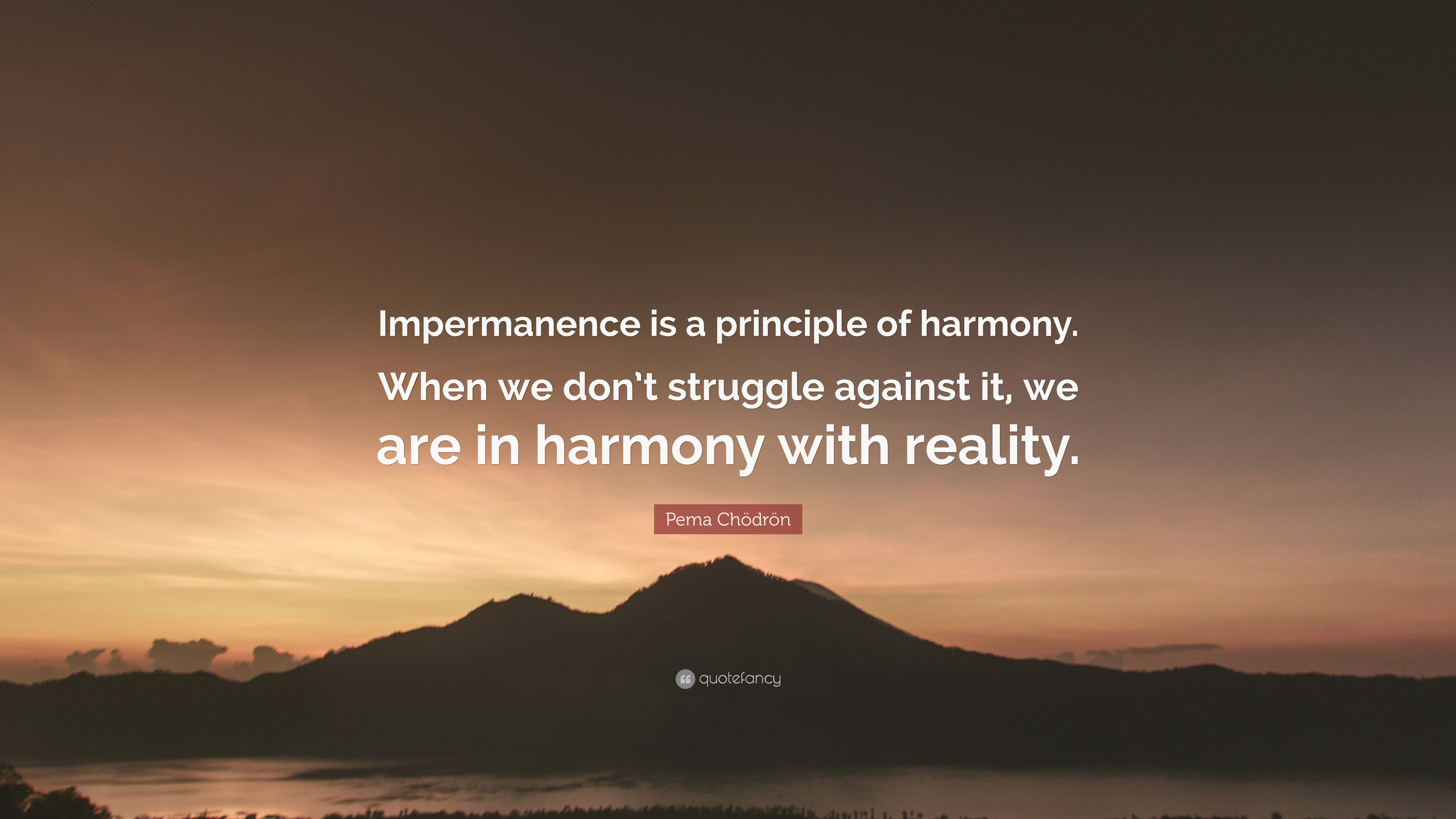 Carlene Hatcher Polite Quote: Impermanence is the law of