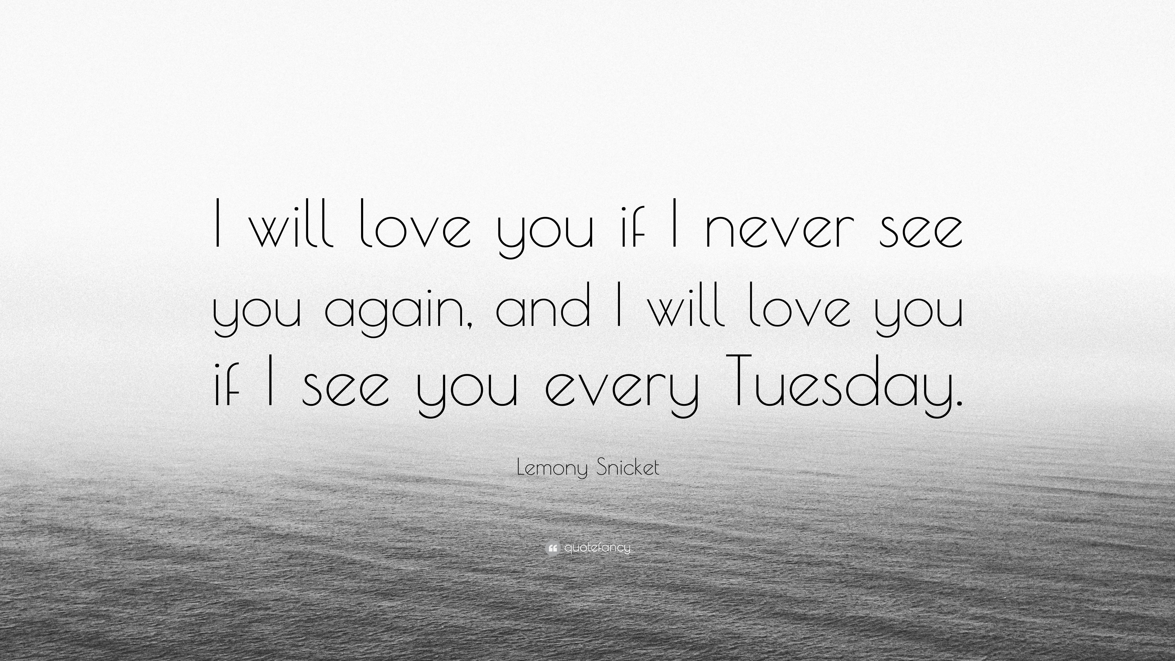"""Lemony Snicket Quote """"I will love you if I never see you again"""