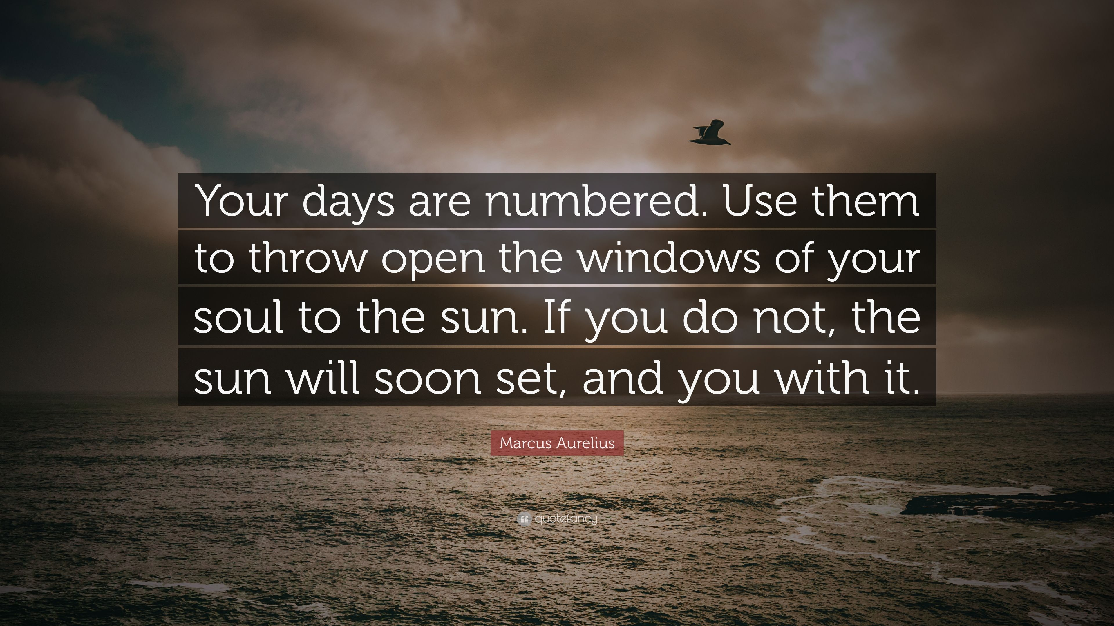 Marcus Aurelius Quote Your Days Are Numbered Use Them To Throw