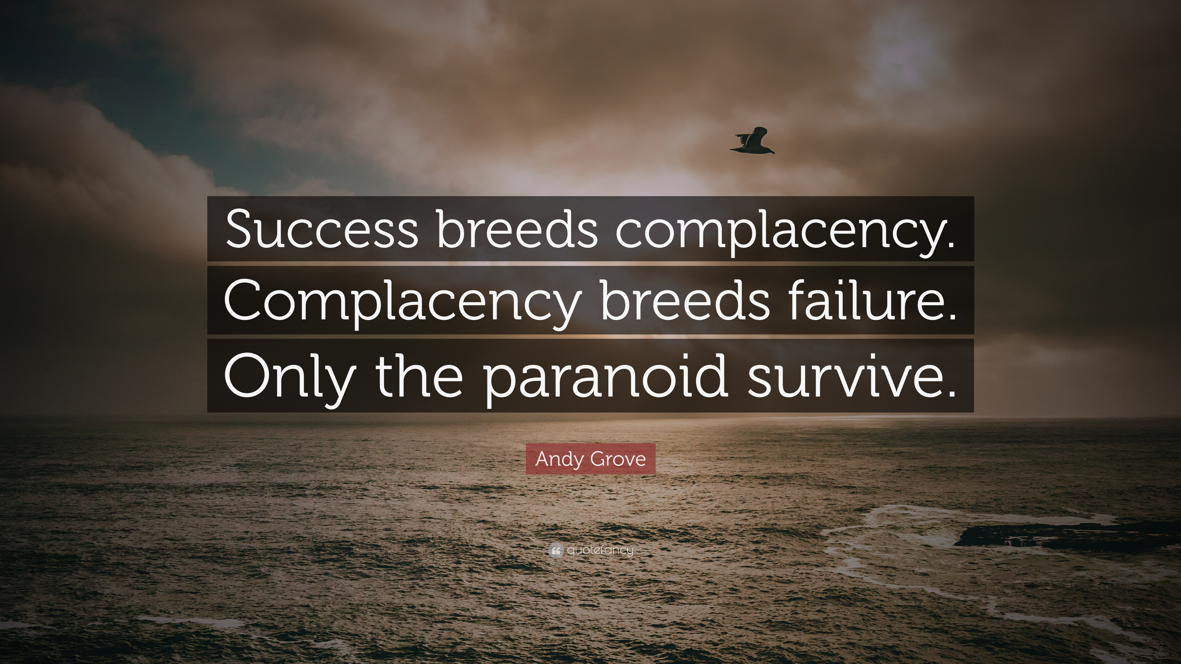 "Complacency Quotes Andy Grove Quote ""Success Breeds Complacencycomplacency Breeds"