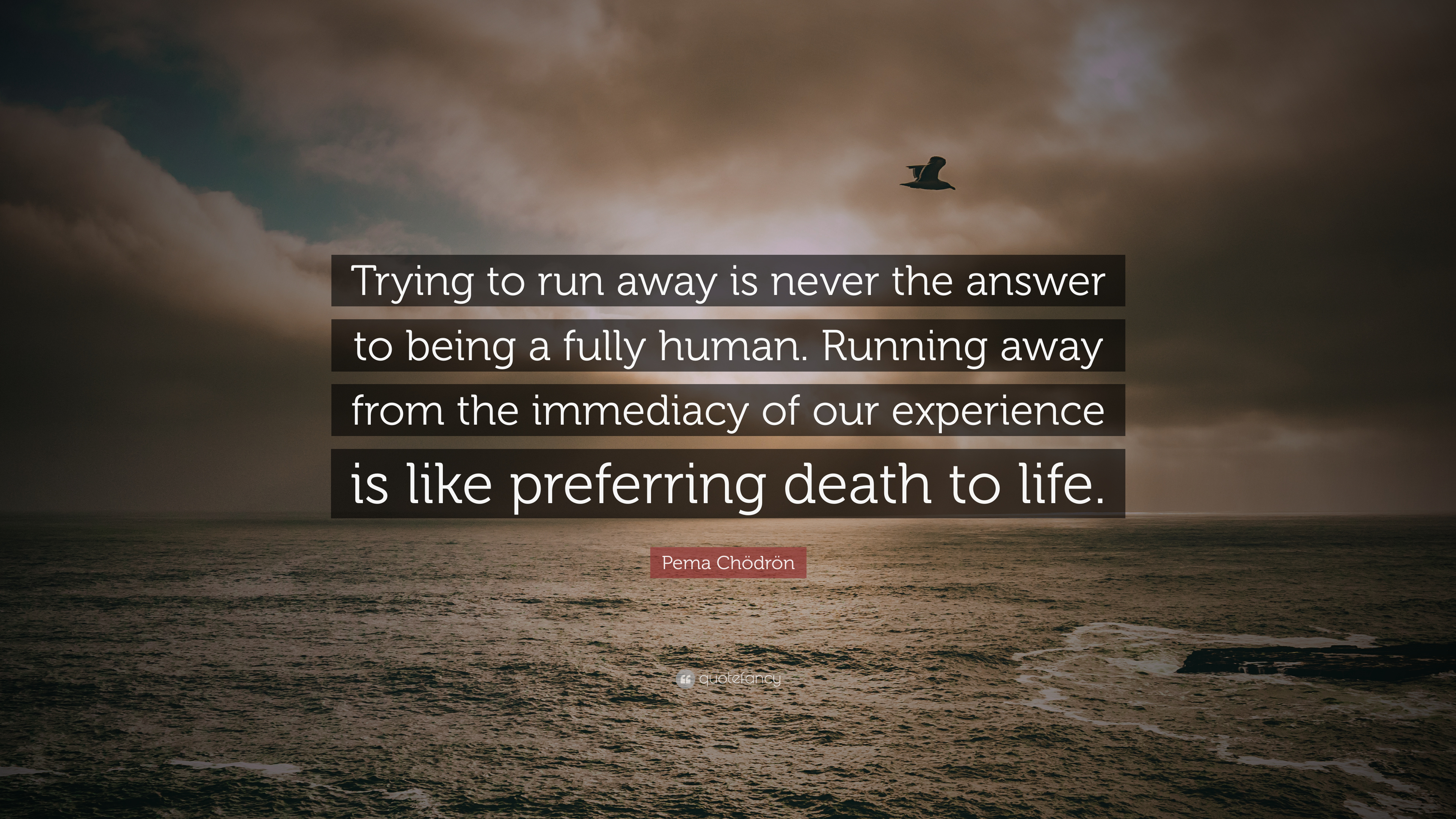 """Pema Chödrön Quote: """"Trying to run away is never the answer ..."""