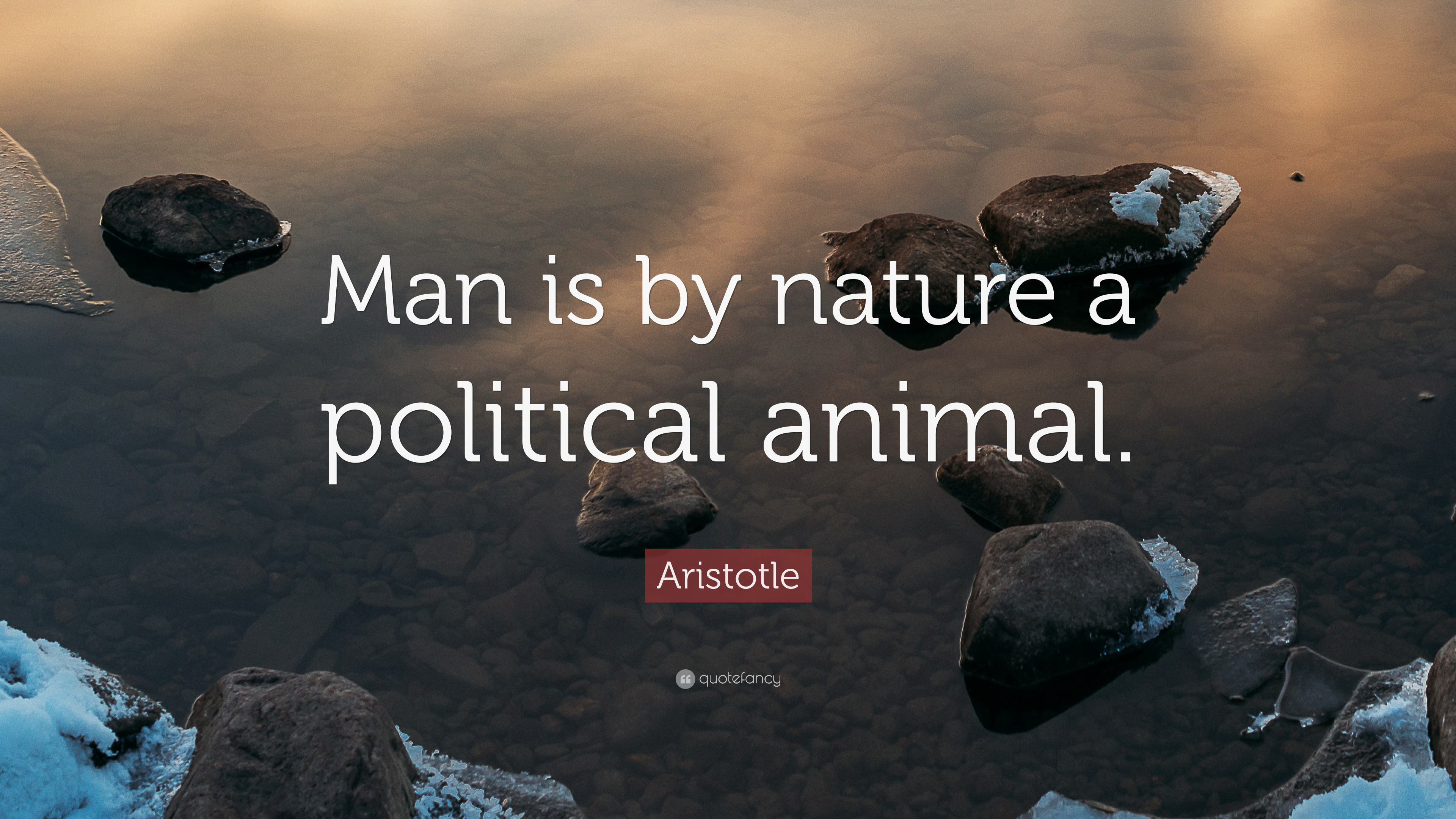 """Aristotle Quotes On Politics Image Quotes At Hippoquotes Com: Aristotle Quote: """"Man Is By Nature A Political Animal"""