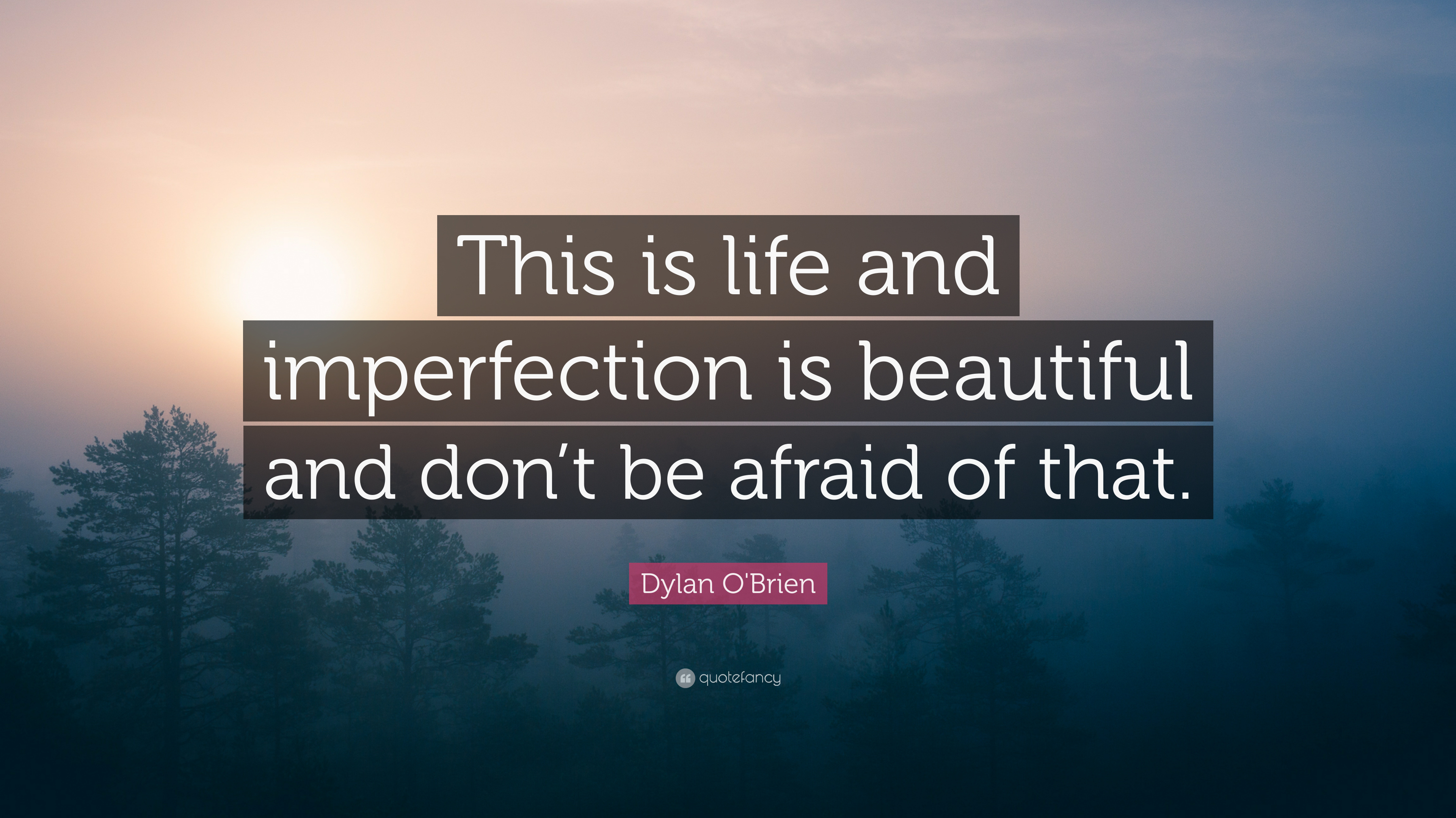 "Dylan O\'Brien Quote: ""This is life and imperfection is ..."