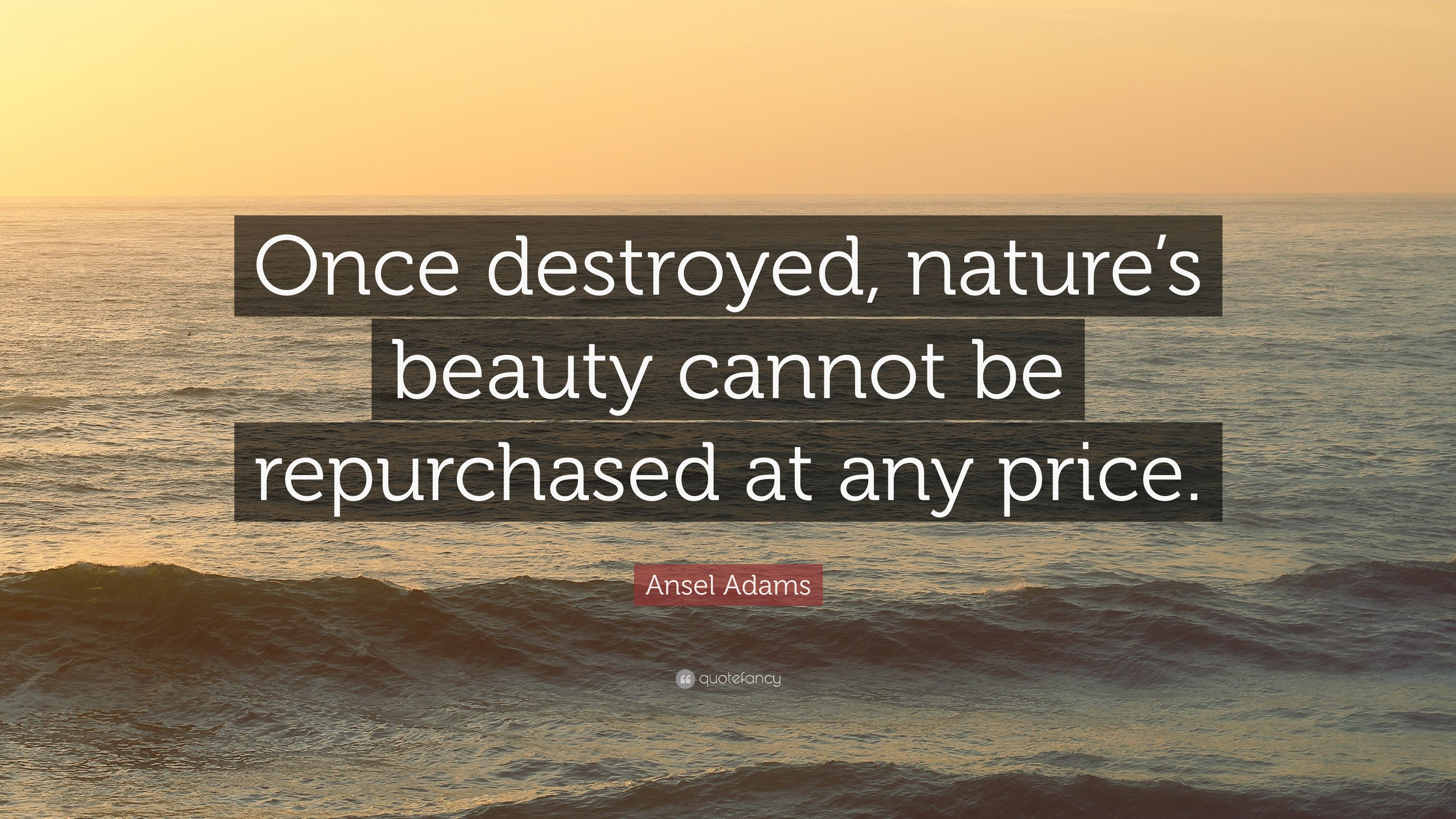 """Quotes About Destroyed Friendship Ansel Adams Quote """"Once Destroyed Nature's Beauty Cannot Be"""
