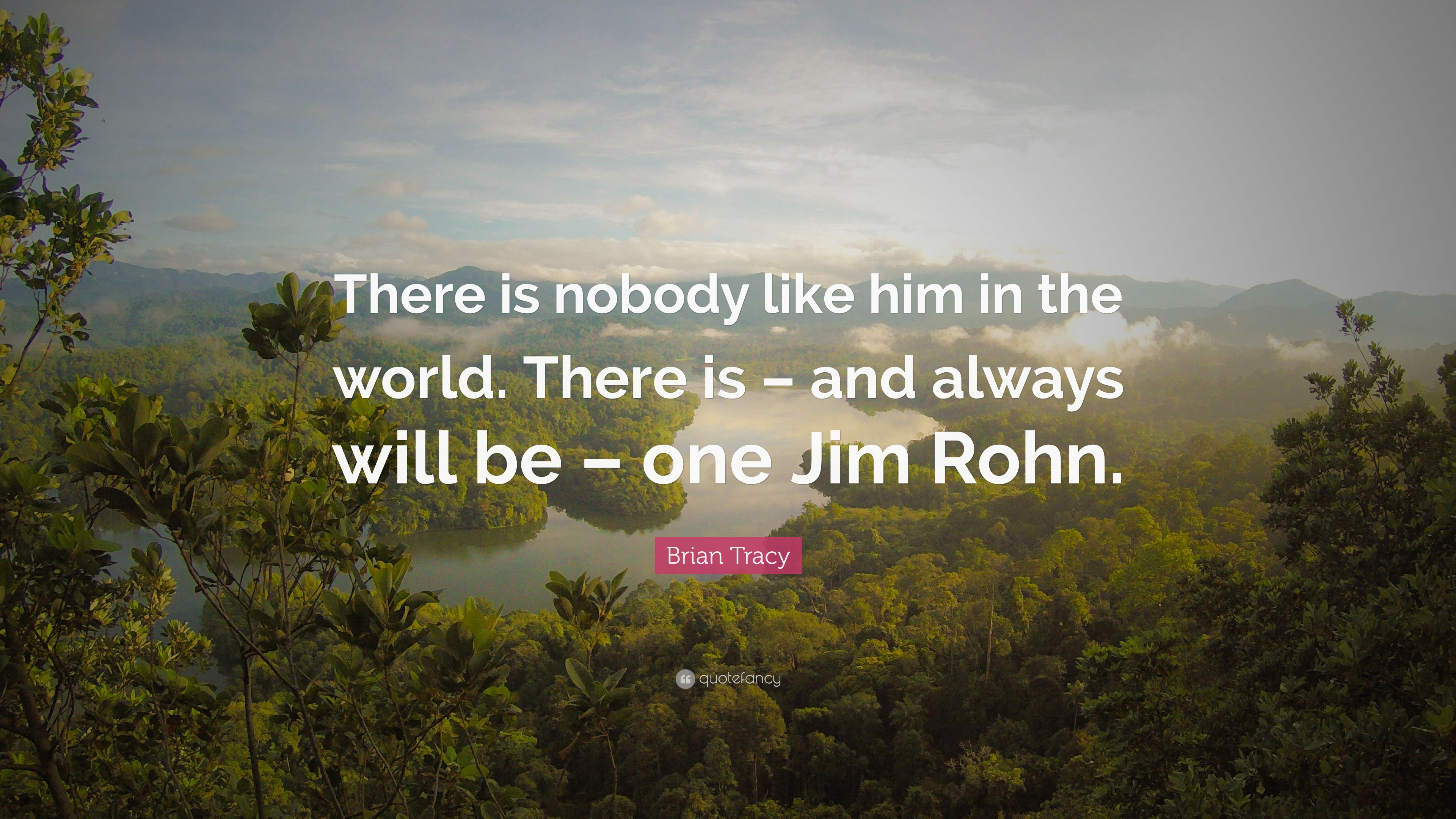 "I Like Him Quotes Brian Tracy Quote ""There Is Nobody Like Him In The Worldthere"