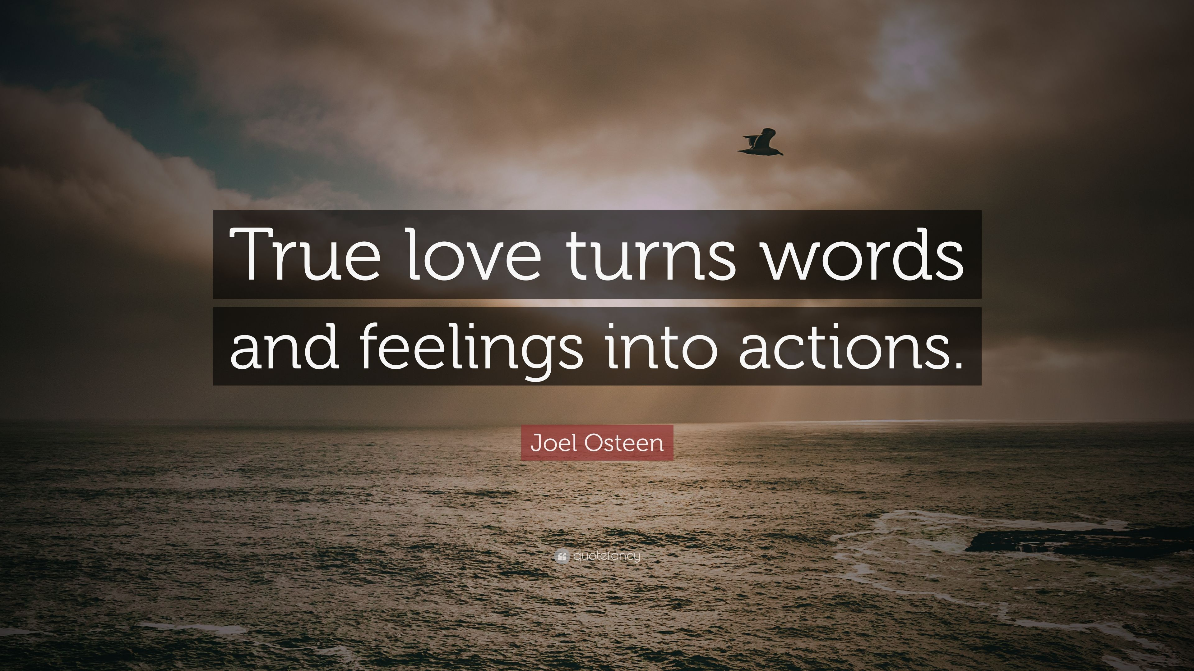 """Joel Osteen Quotes On Love Delectable Joel Osteen Quote """"True Love Turns Words And Feelings Into"""