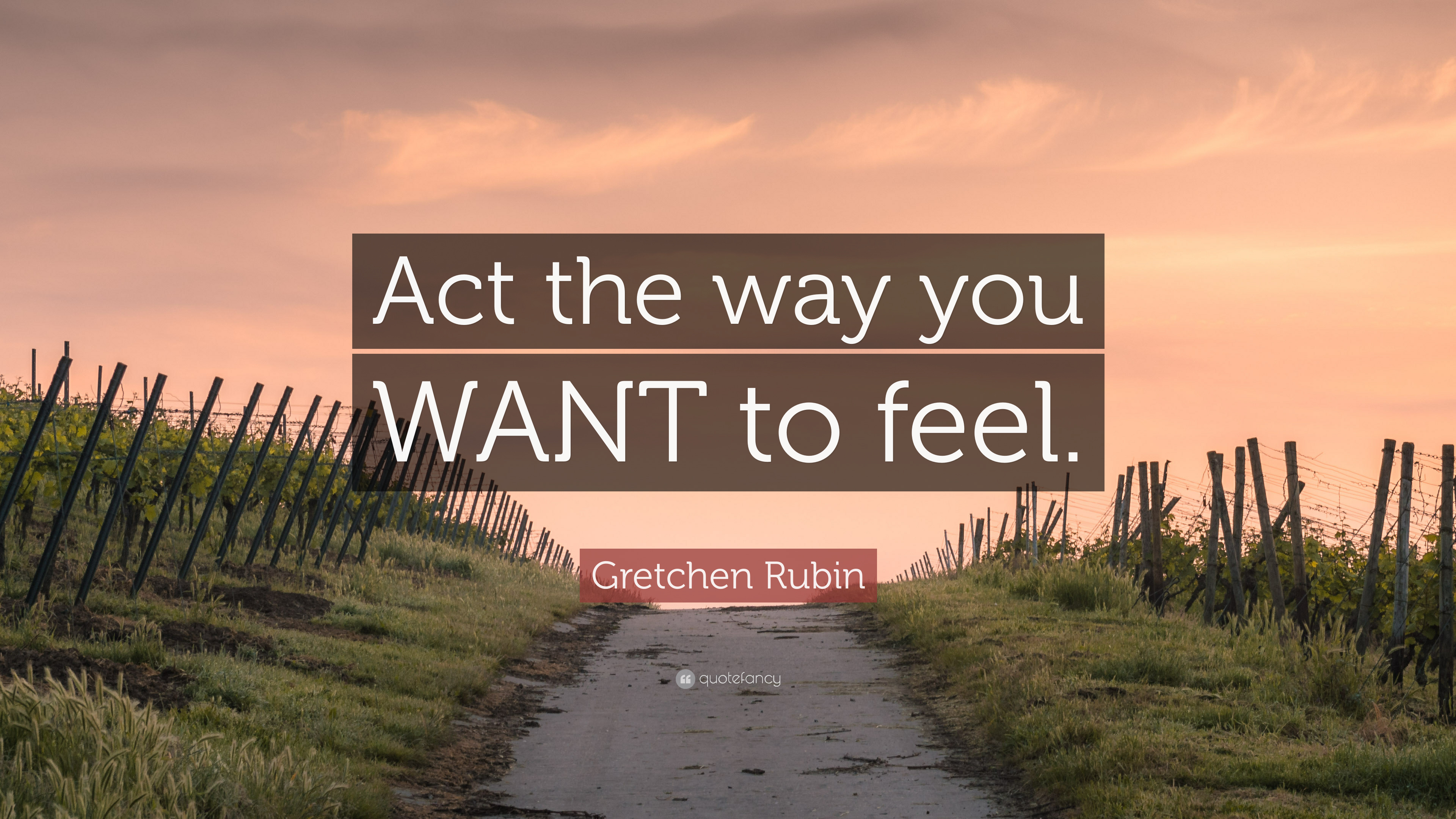 2128358-Gretchen-Rubin-Quote-Act-the-way-you-WANT-to-feel.jpg