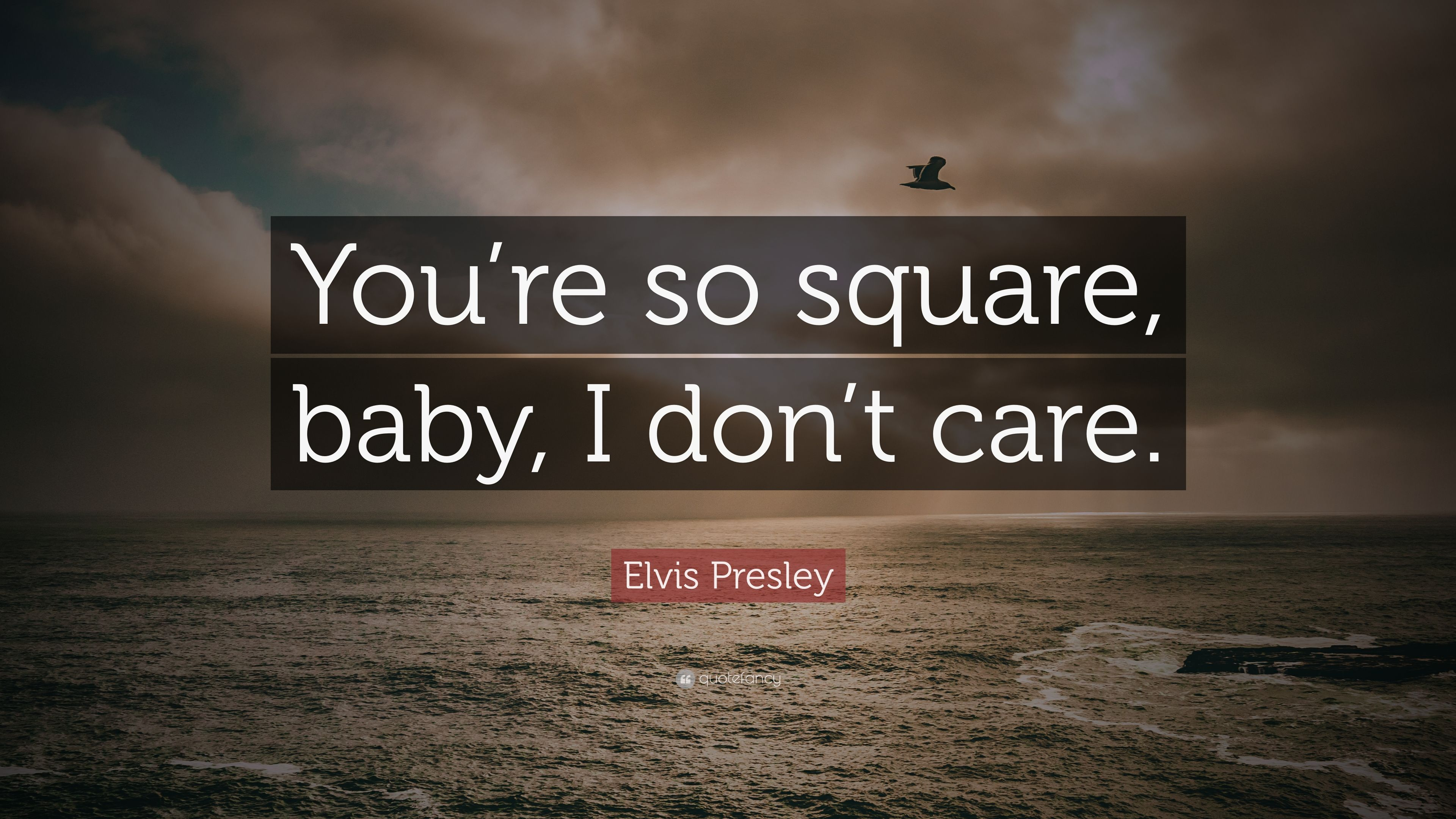 "Elvis Presley Quote: ""You're So Square, Baby, I Don't Care"