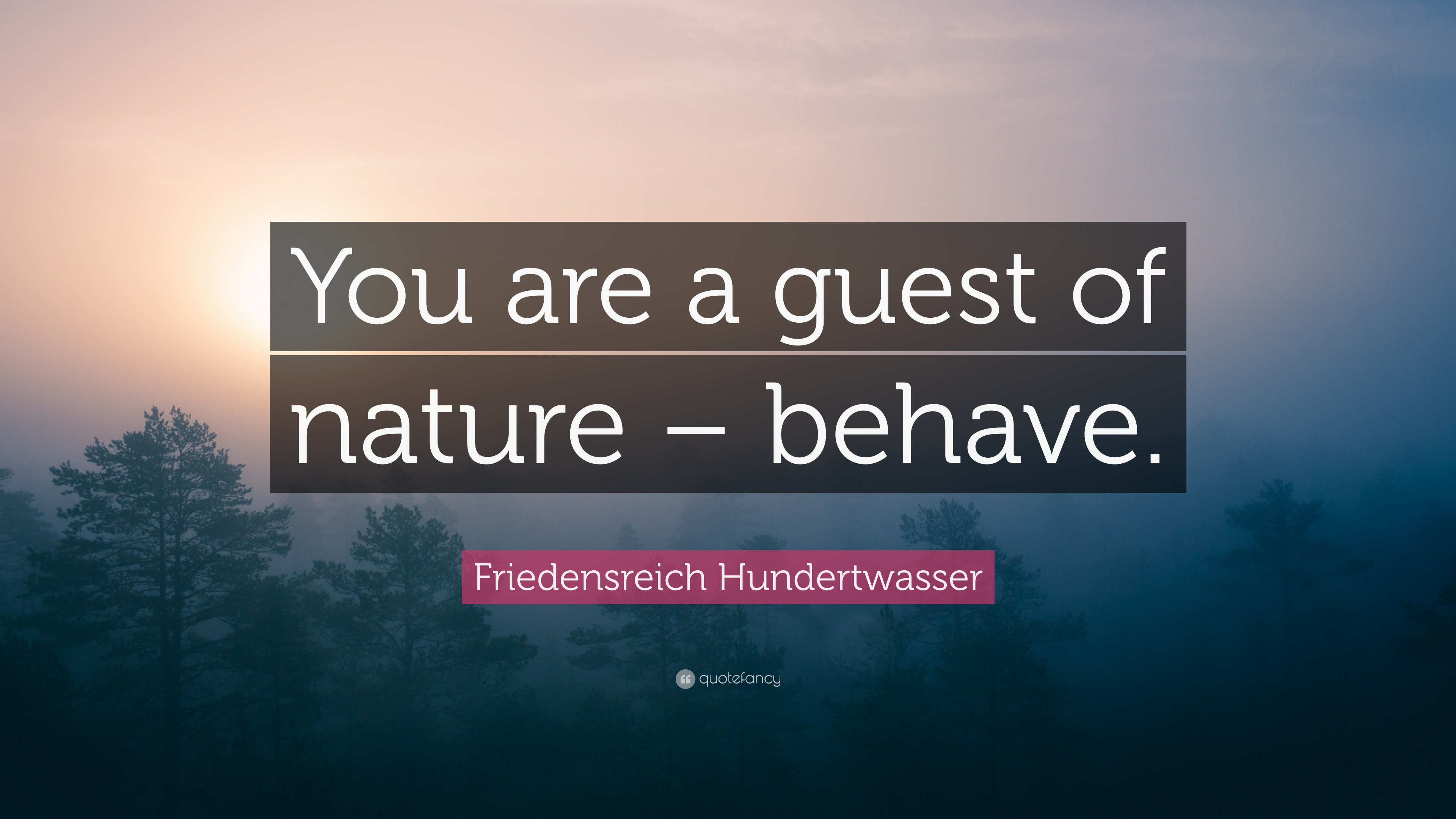 Friedensreich Hundertwasser Quote You Are A Guest Of Nature Behave