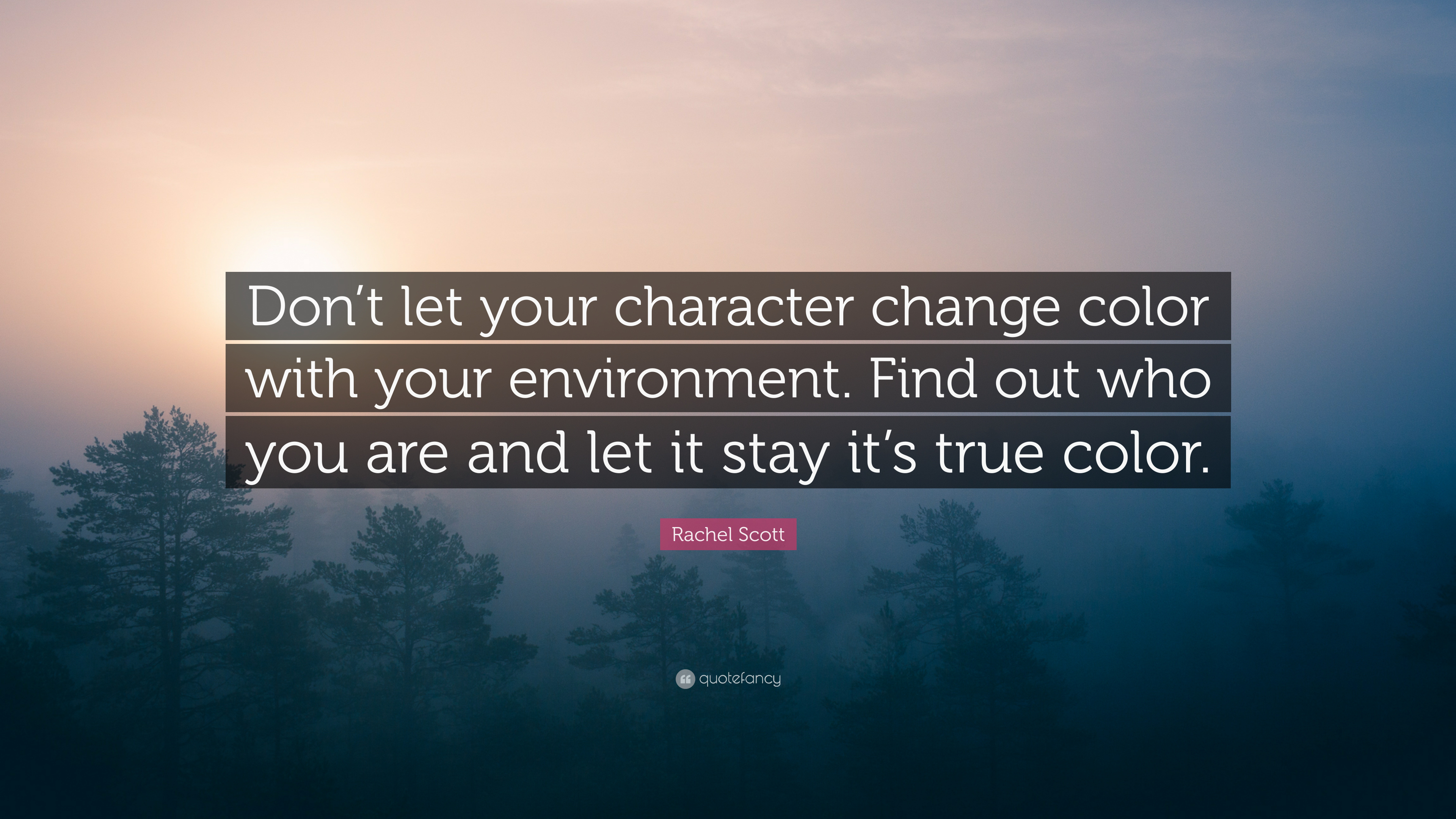 Rachel Scott Quote Dont Let Your Character Change Color With Your