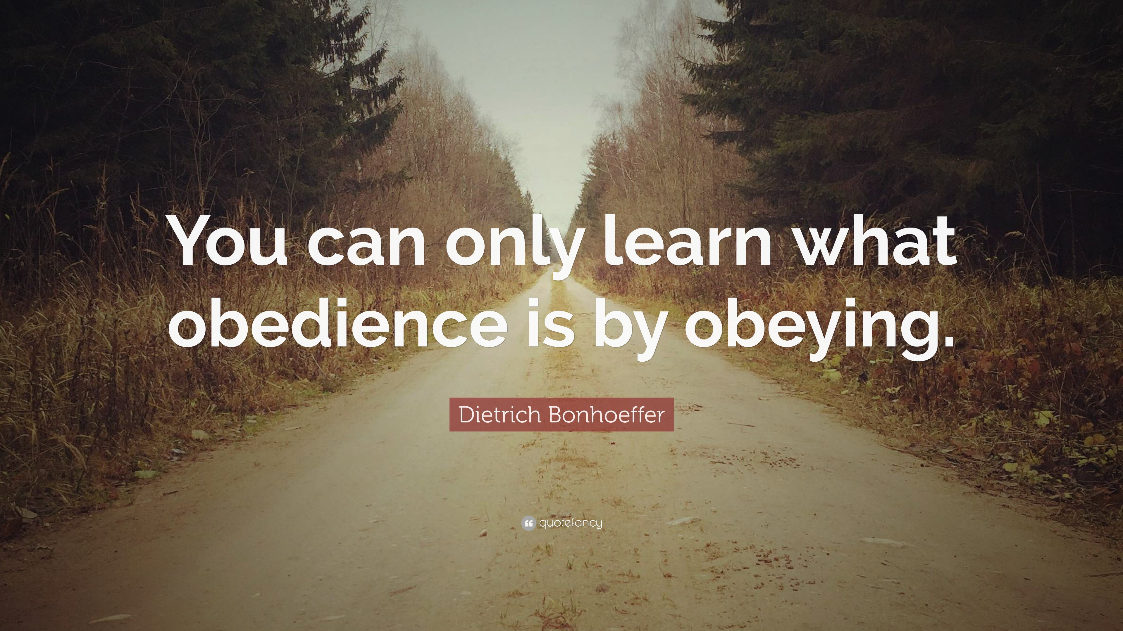 "Dietrich Bonhoeffer Quote: ""You can only learn what obedience is ..."