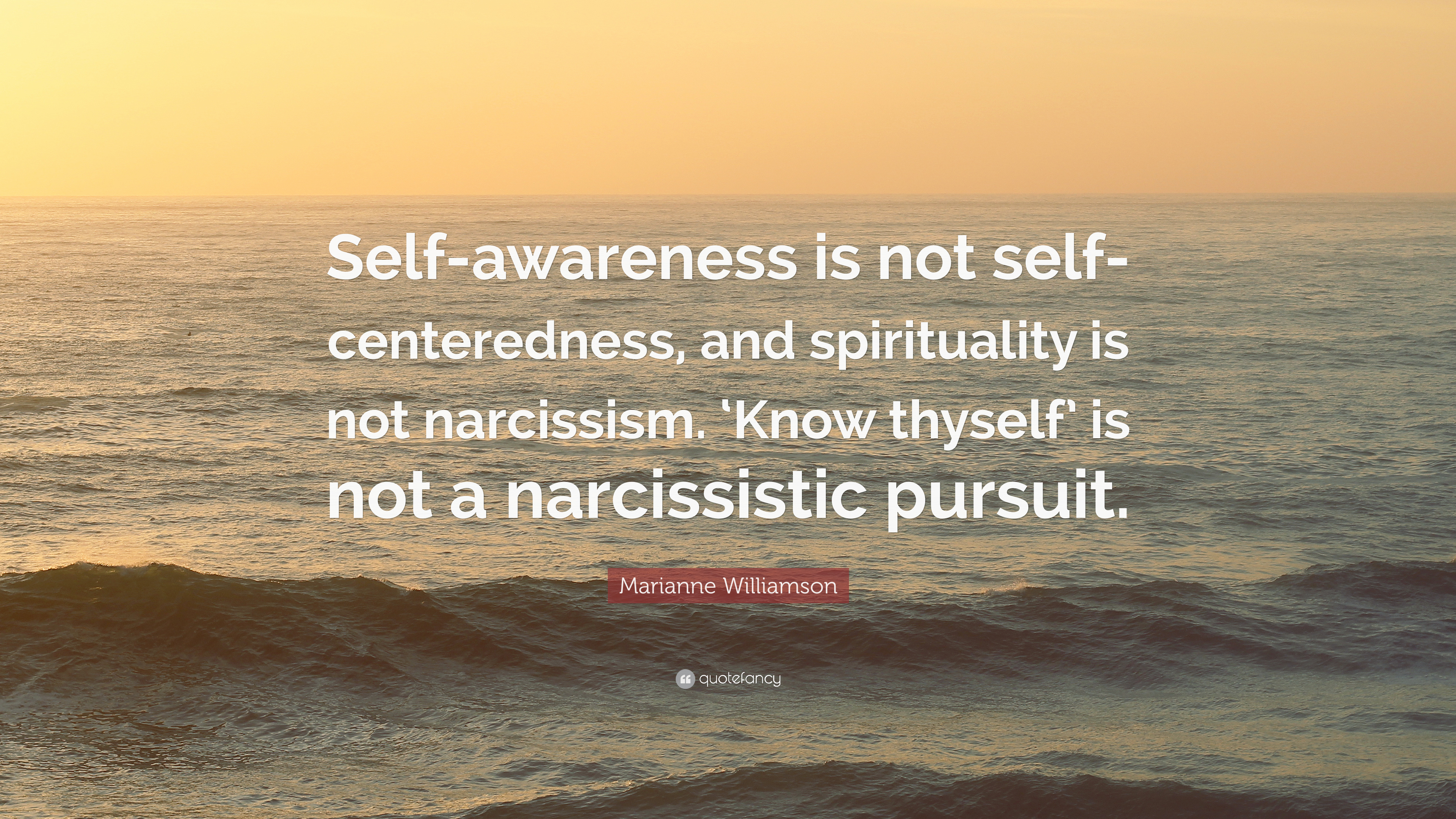 """Marianne Williamson Quote: """"Self-awareness is not self"""