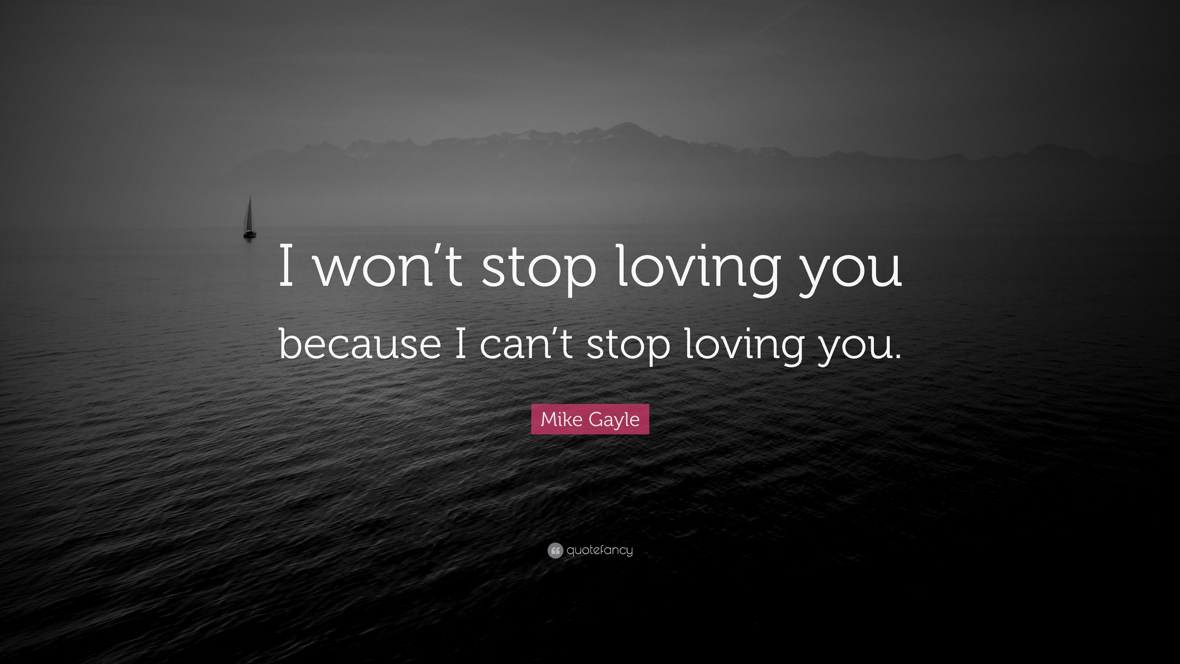 """Mike Gayle Quote: """"I Won't Stop Loving You Because I Can't"""