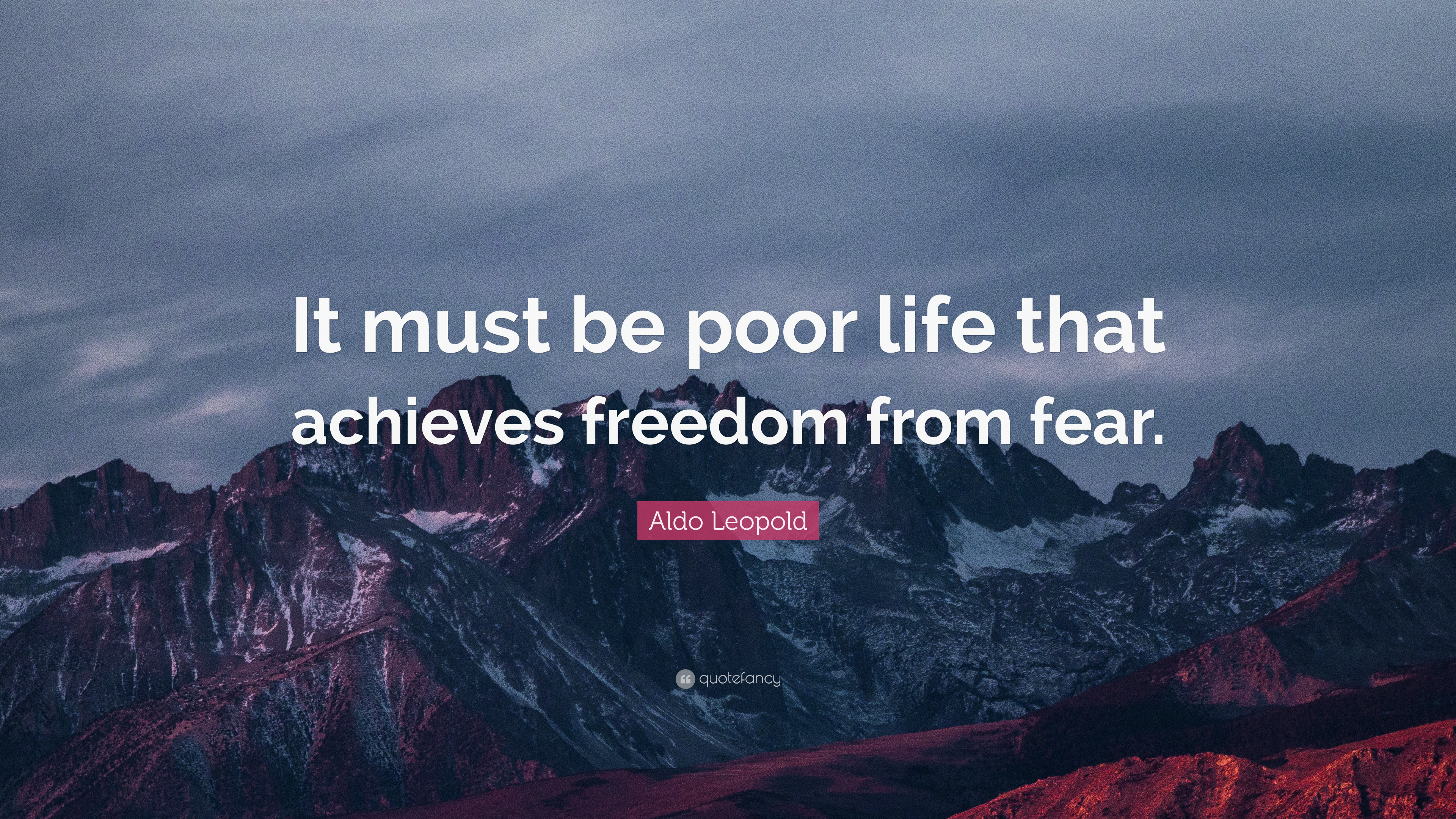 "Poor Life Quotes Classy Aldo Leopold Quote ""It Must Be Poor Life That Achieves Freedom"