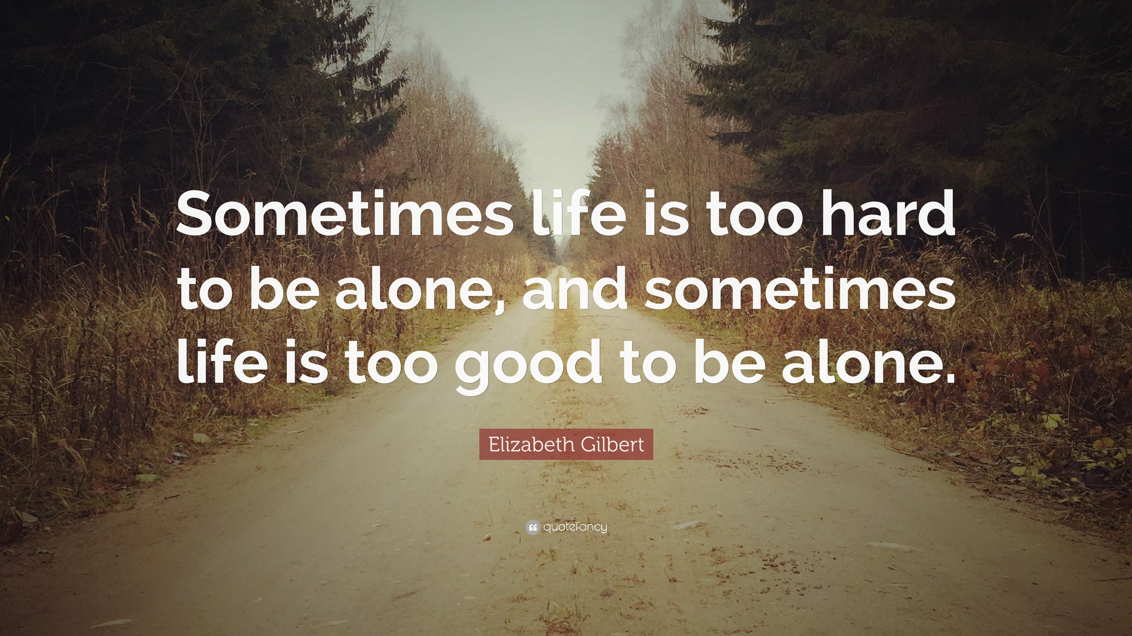 Elizabeth Gilbert Quote Sometimes Life Is Too Hard To Be Alone