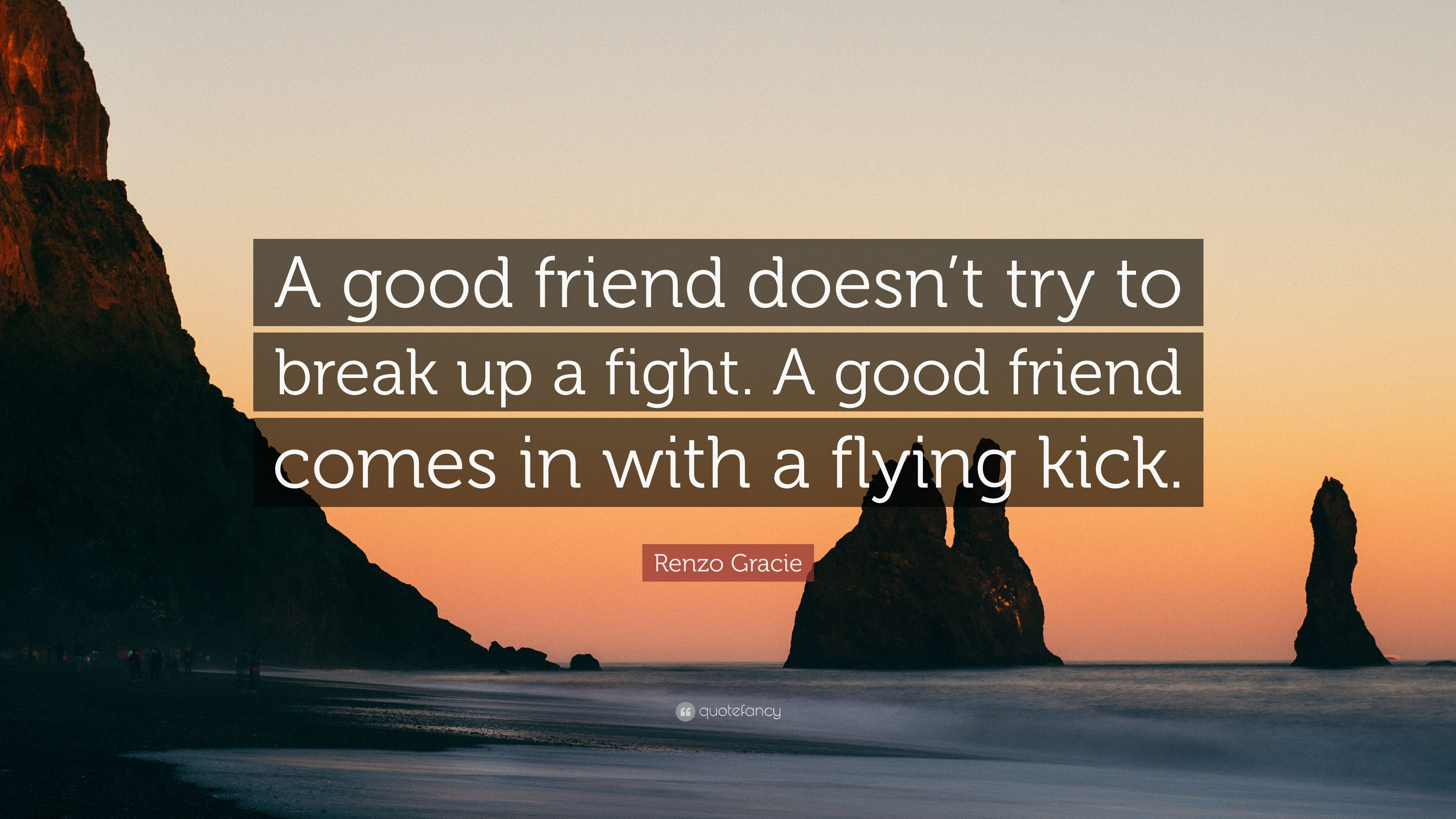 """Good Break Up Quotes Renzo Gracie Quote """"A Good Friend Doesn't Try To Break Up A Fight"""