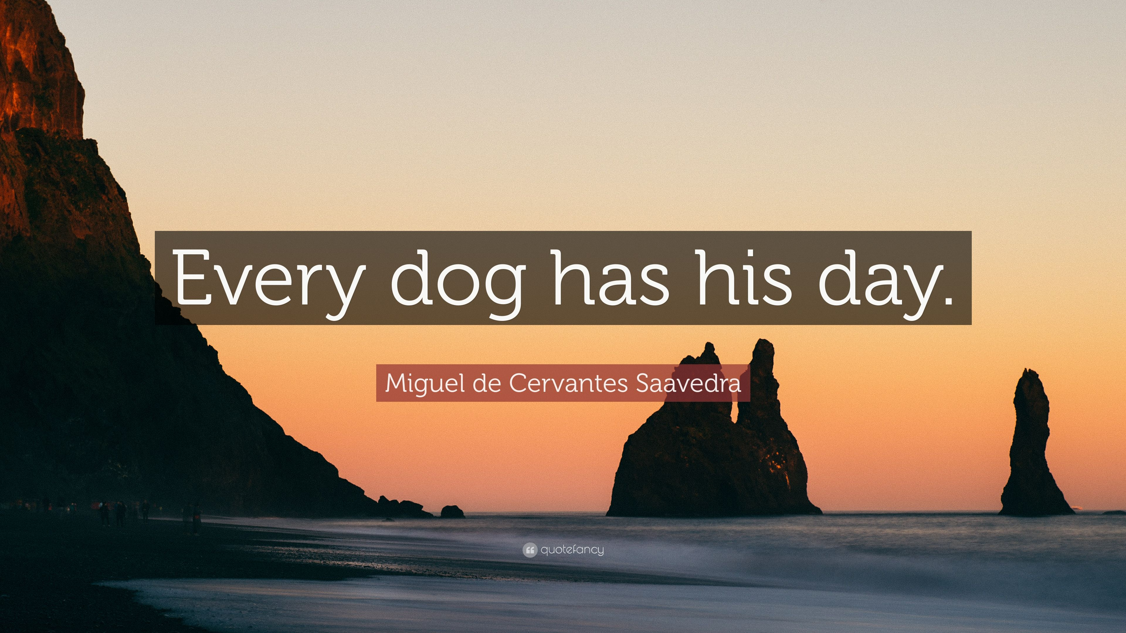 Every Dog Gets His Day Quotes Every Dog Has His Day Corgi Card