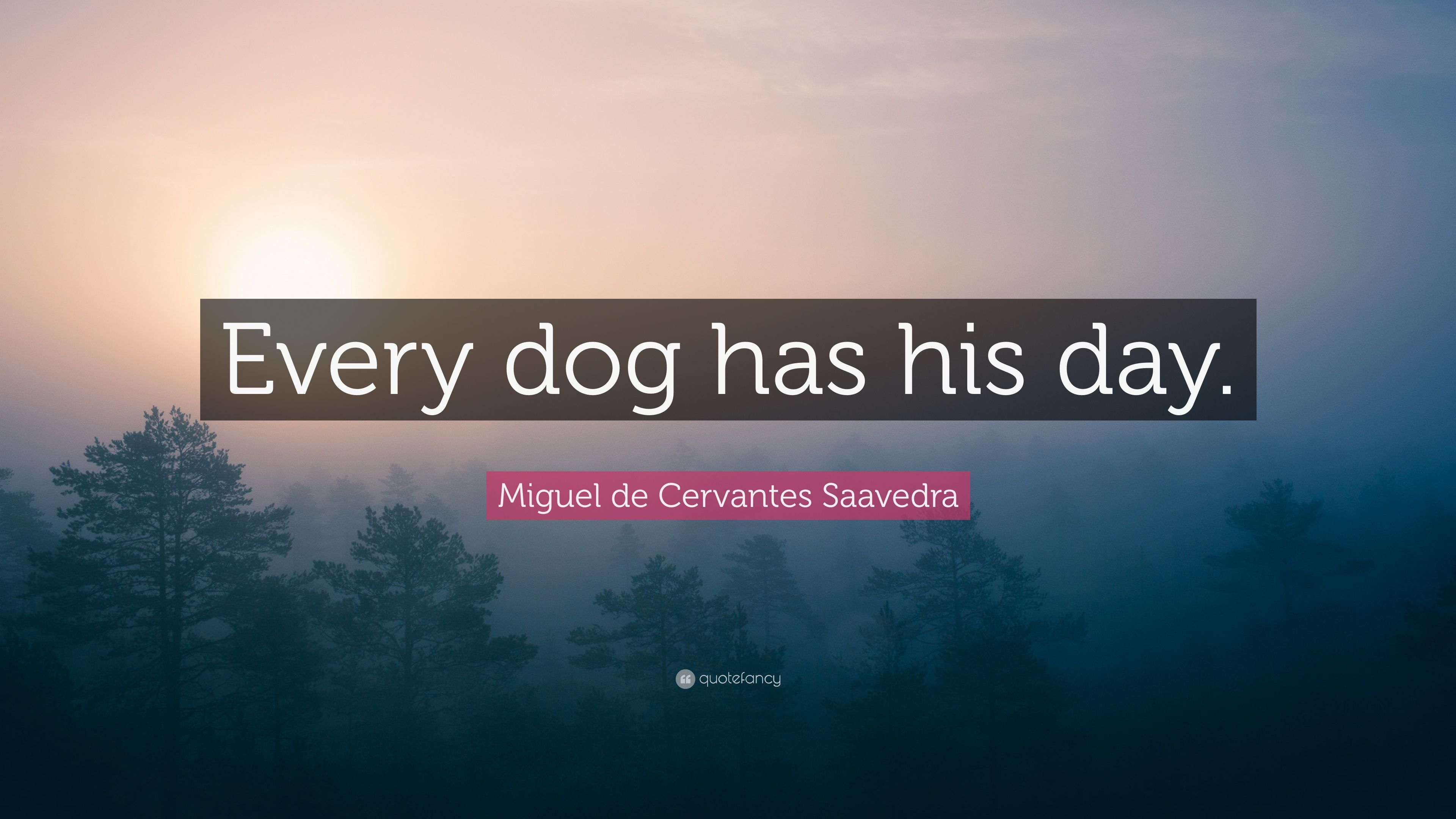 Miguel De Cervantes Saavedra Quote Every Dog Has His Day 9