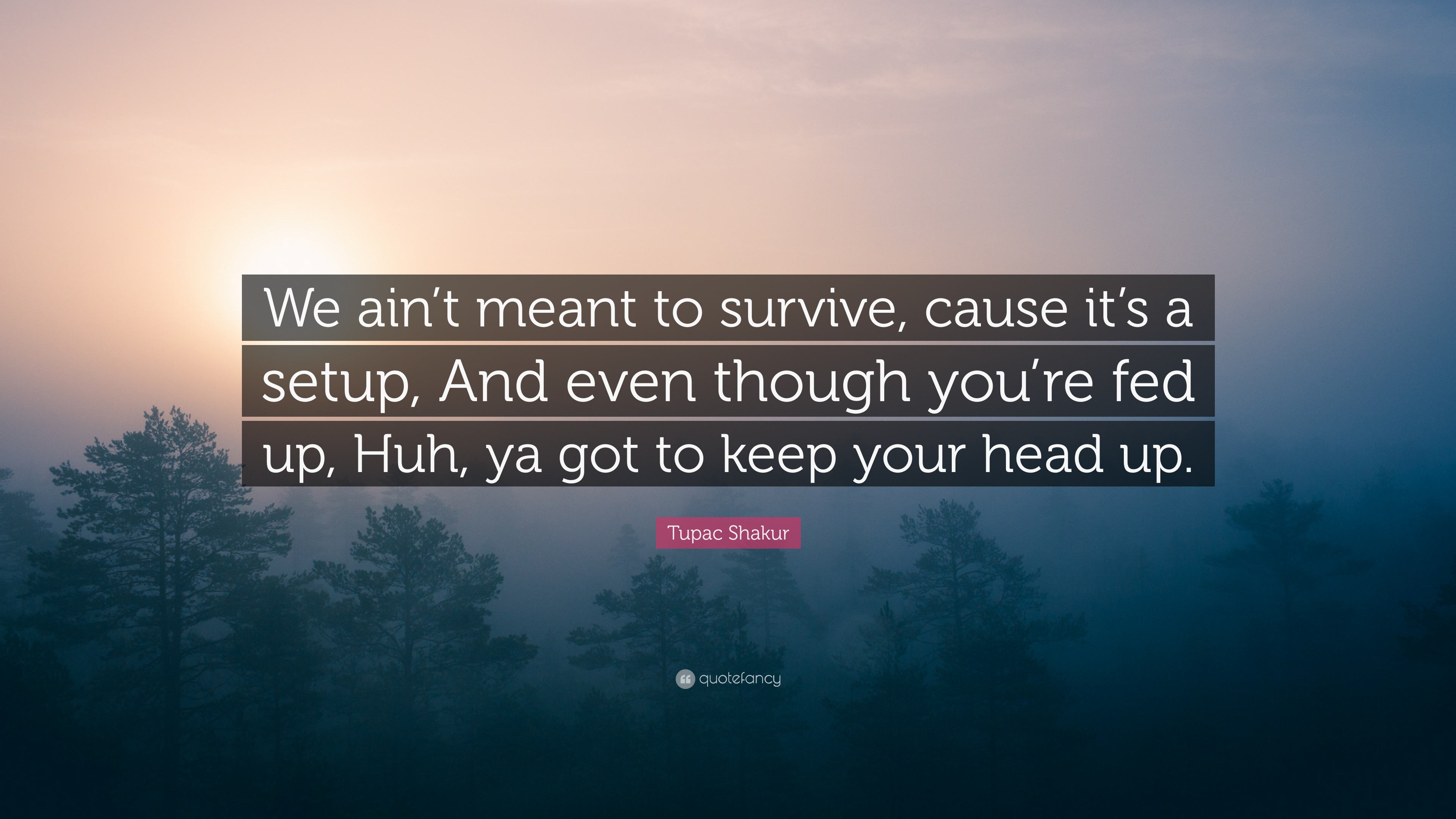 Tupac Shakur Quote We Aint Meant To Survive Cause Its A Setup