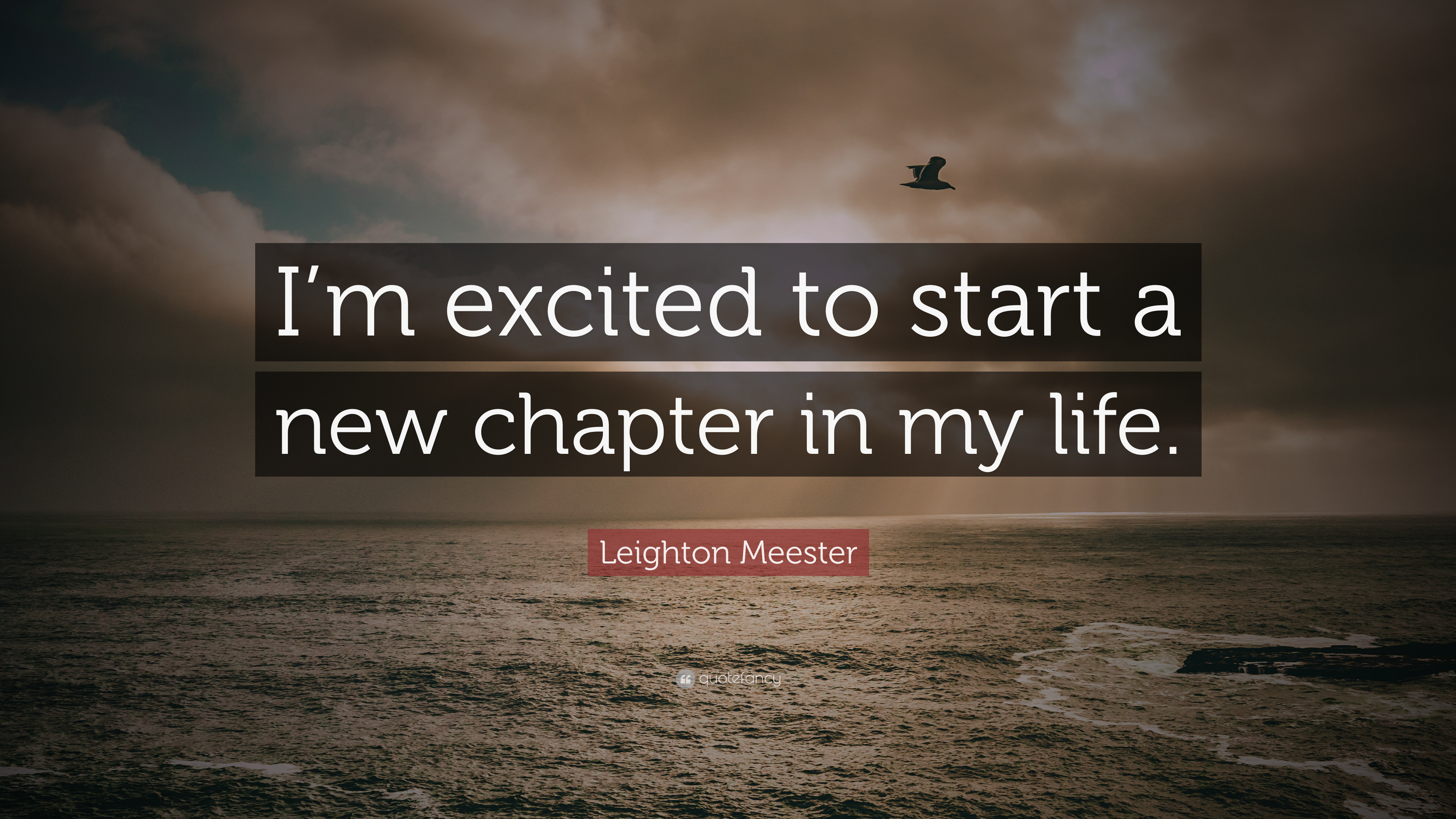 Leighton Meester Quote: Im excited to start a new