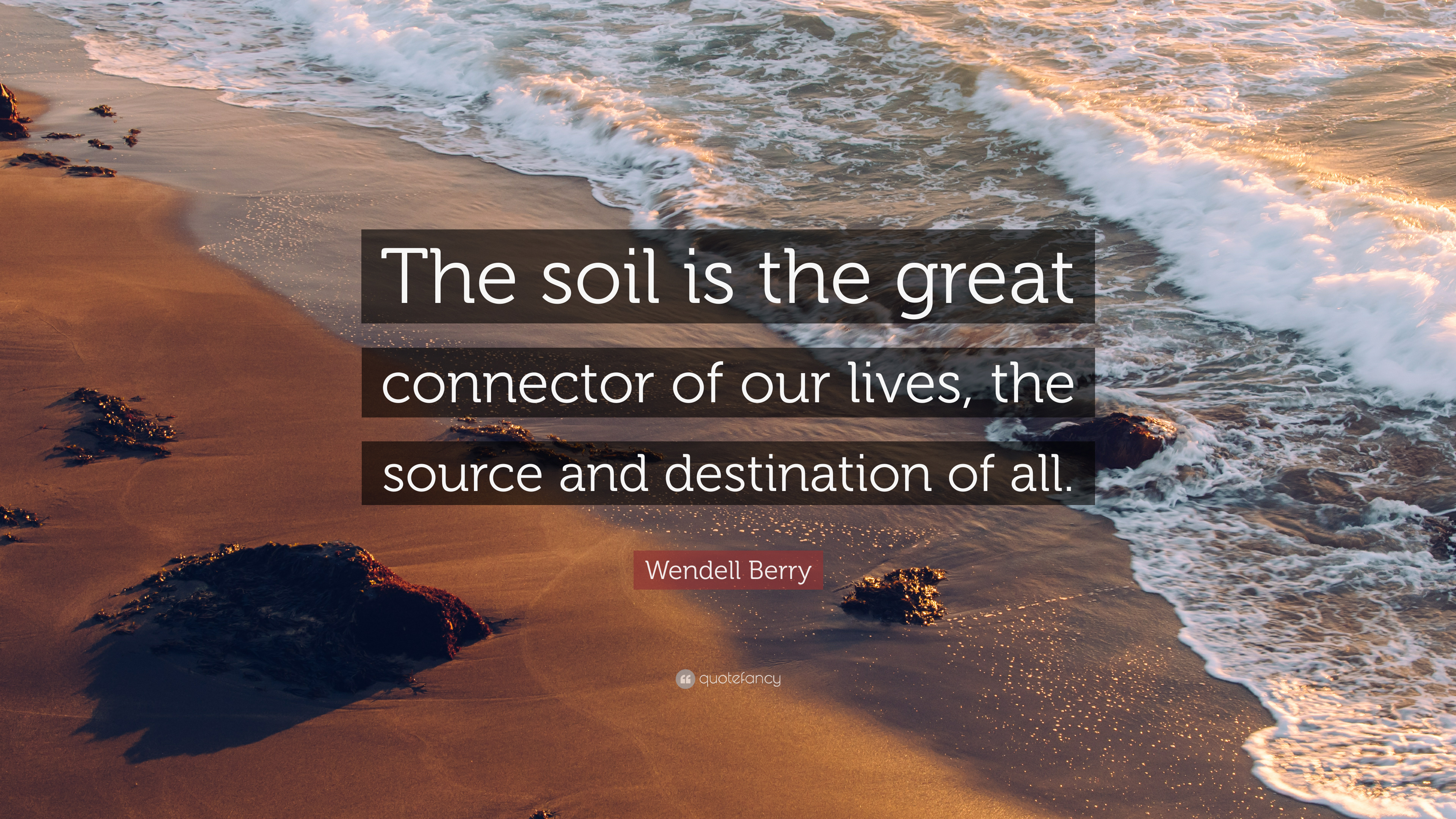 Wendell berry quote the soil is the great connector of for Soil our life
