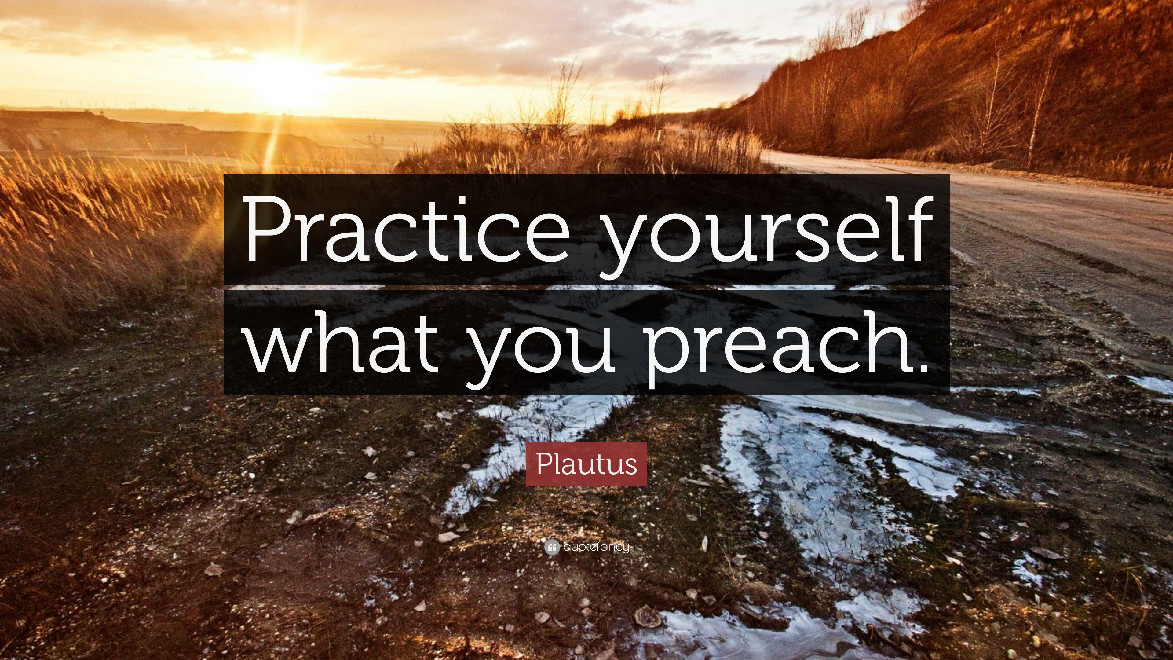 "Aristotle Quote About Practice: Plautus Quote: ""Practice Yourself What You Preach."" (12"