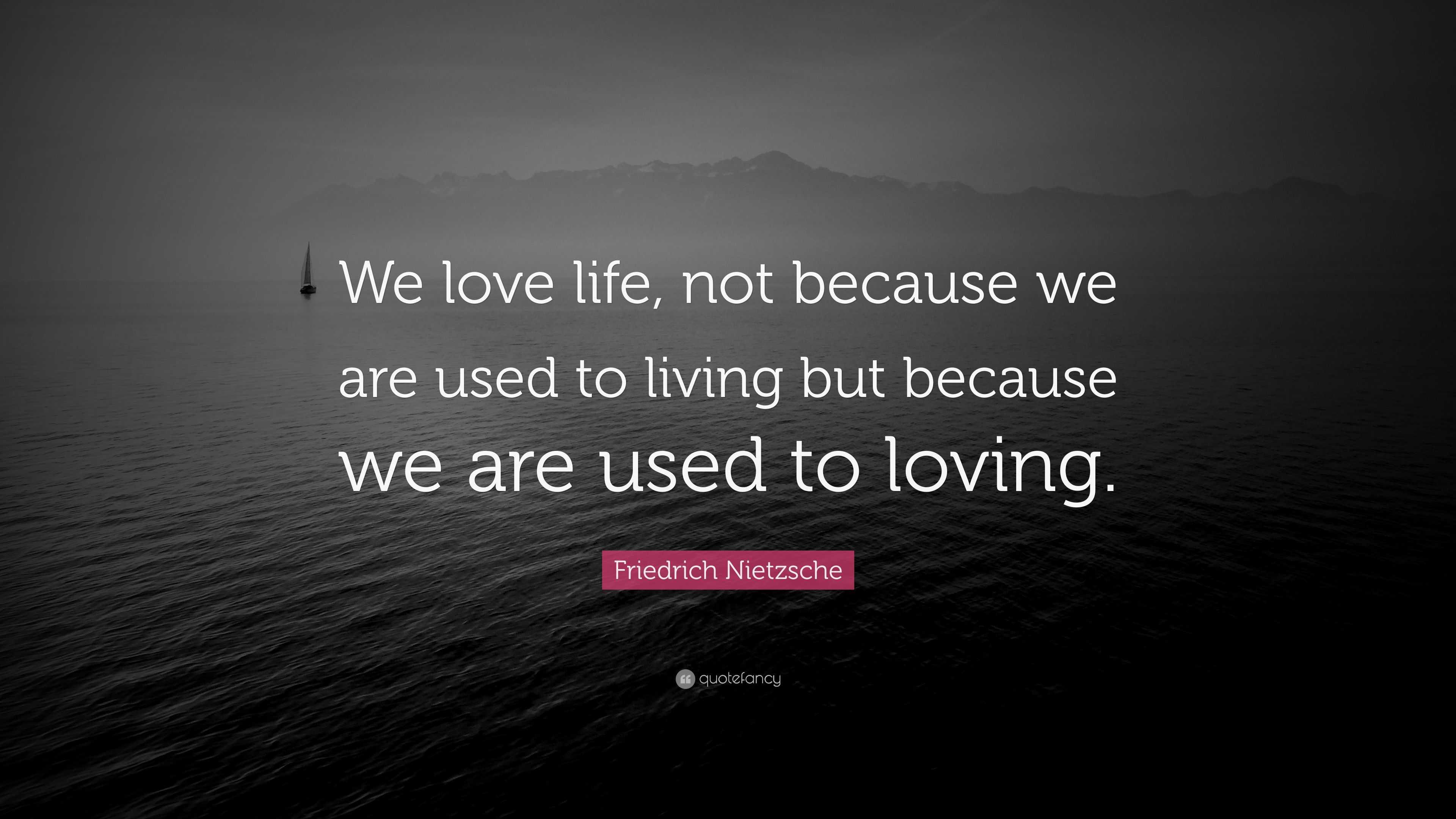 """Friedrich Nietzsche Quote: """"We love life, not because we ..."""
