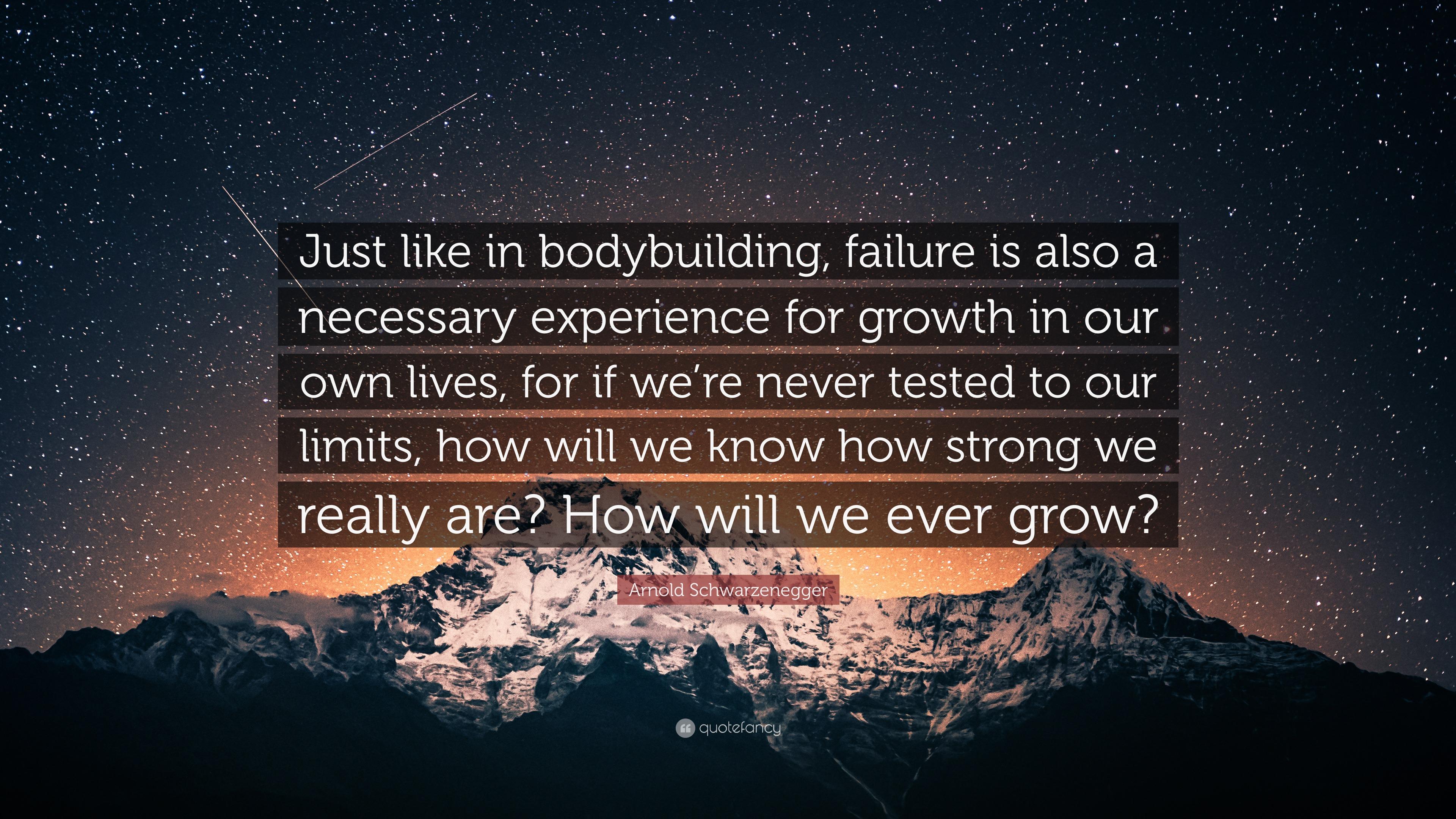"arnold schwarzenegger quote ""just like in bodybuilding failure"