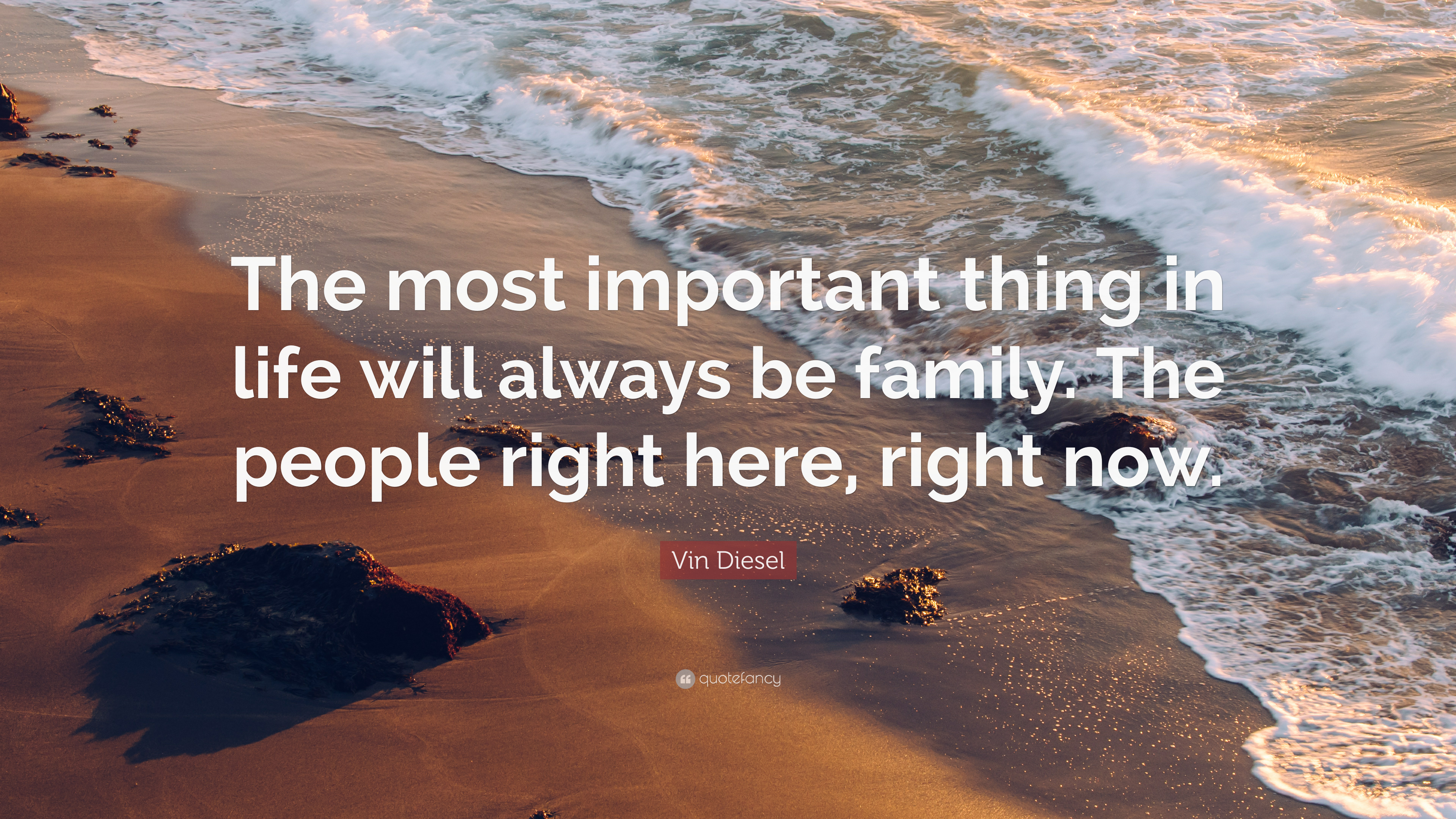 """vin diesel quote """"the most important thing in life will always be"""