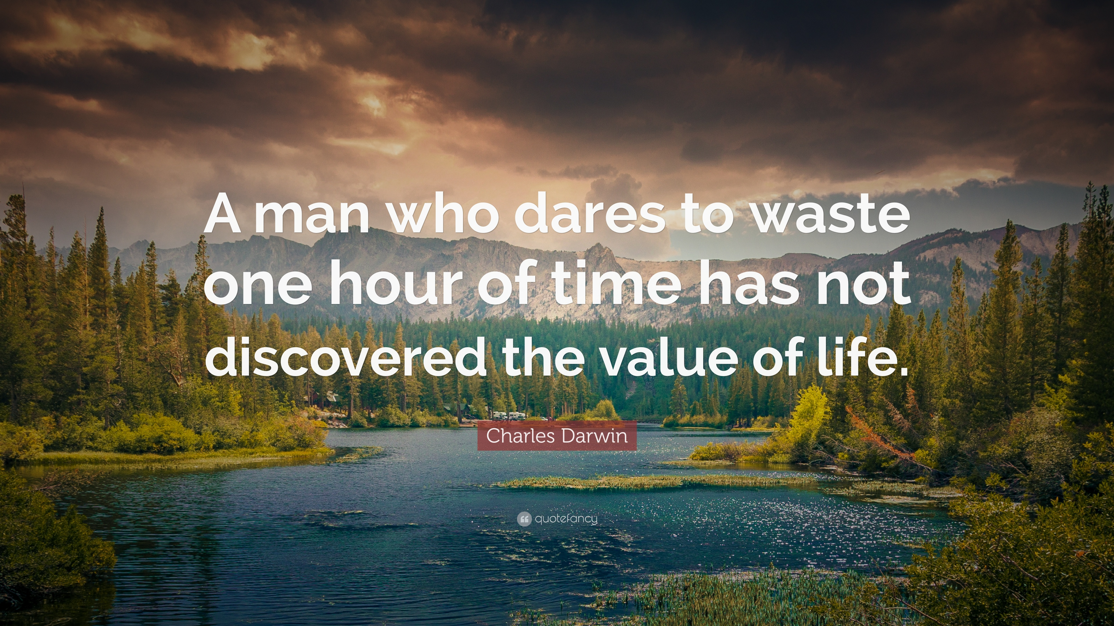 """Value Of Life Quotes Charles Darwin Quote """"A Man Who Dares To Waste One Hour Of Time"""