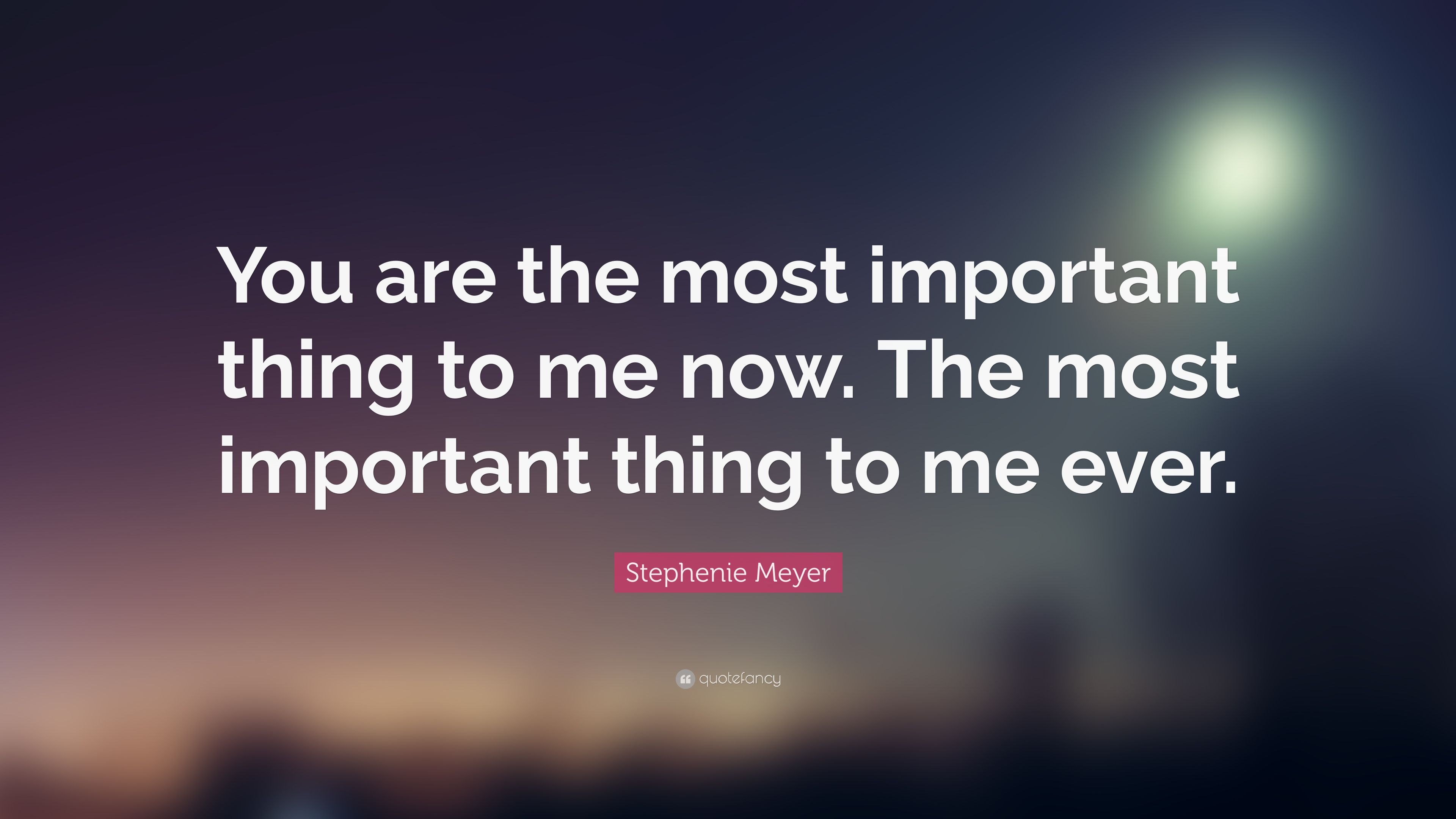 Stephenie Meyer Quote You Are The Most Important Thing To Me Now