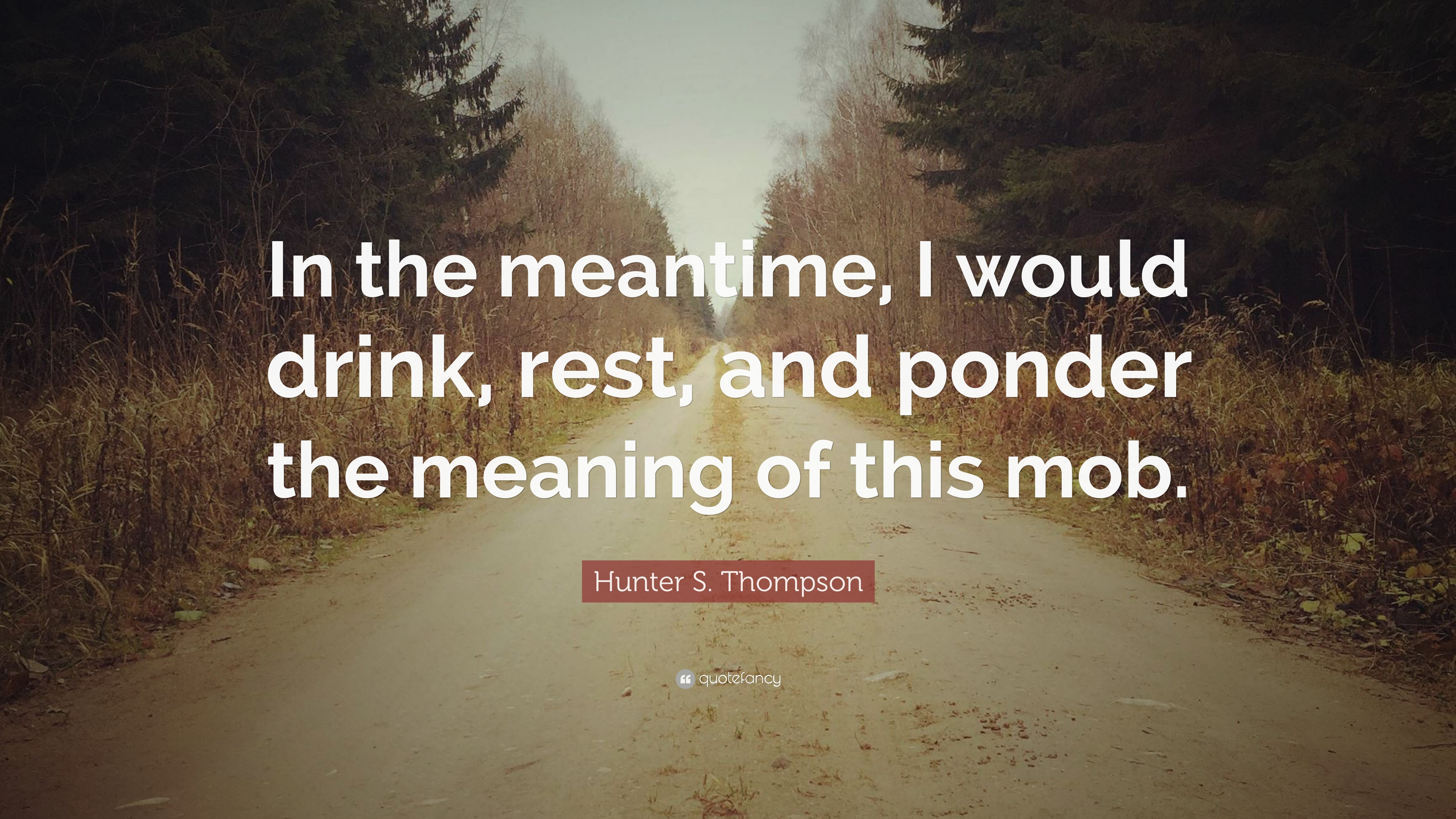 """9fd3e6ac15 Hunter S. Thompson Quote  """"In the meantime"""